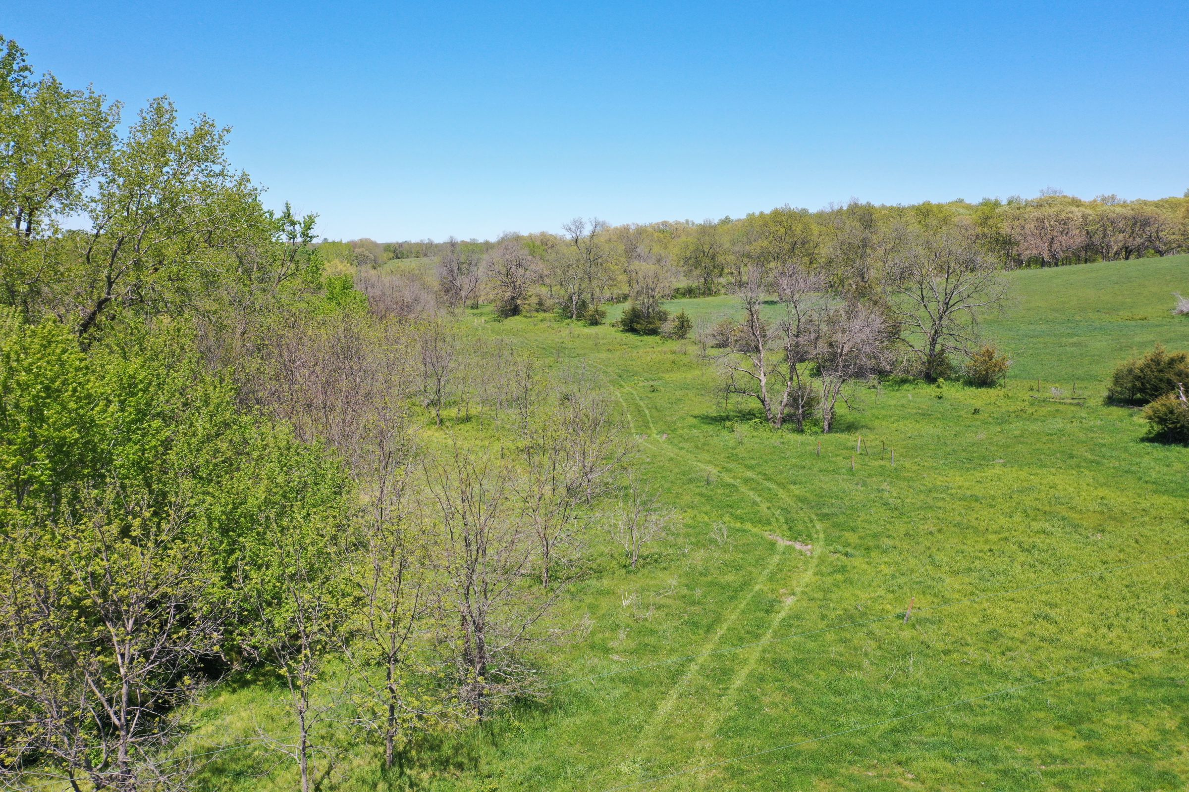 land-decatur-county-iowa-99-acres-listing-number-15525-1-2021-05-14-172507.JPG