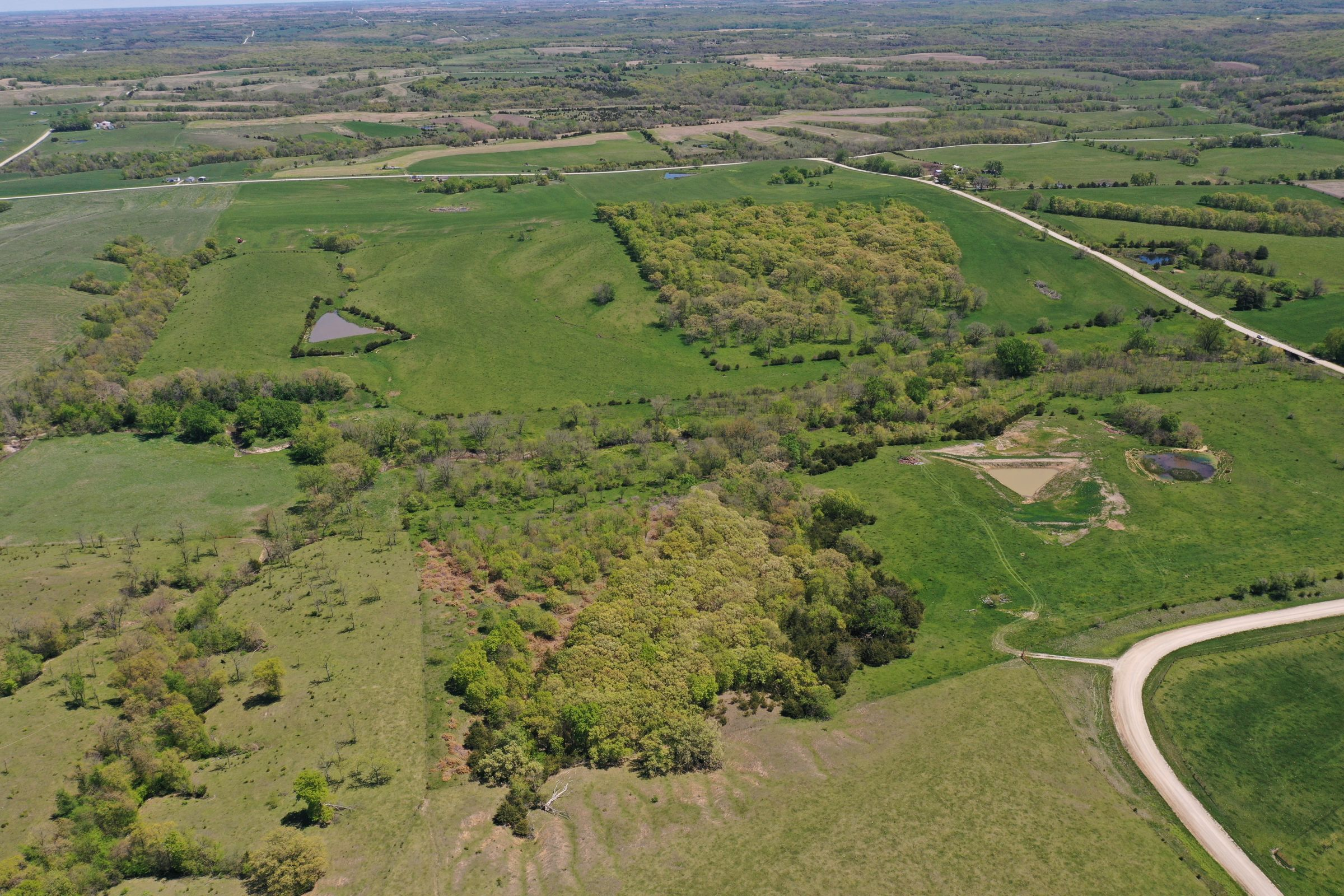 land-decatur-county-iowa-99-acres-listing-number-15525-1-2021-05-14-173507.JPG