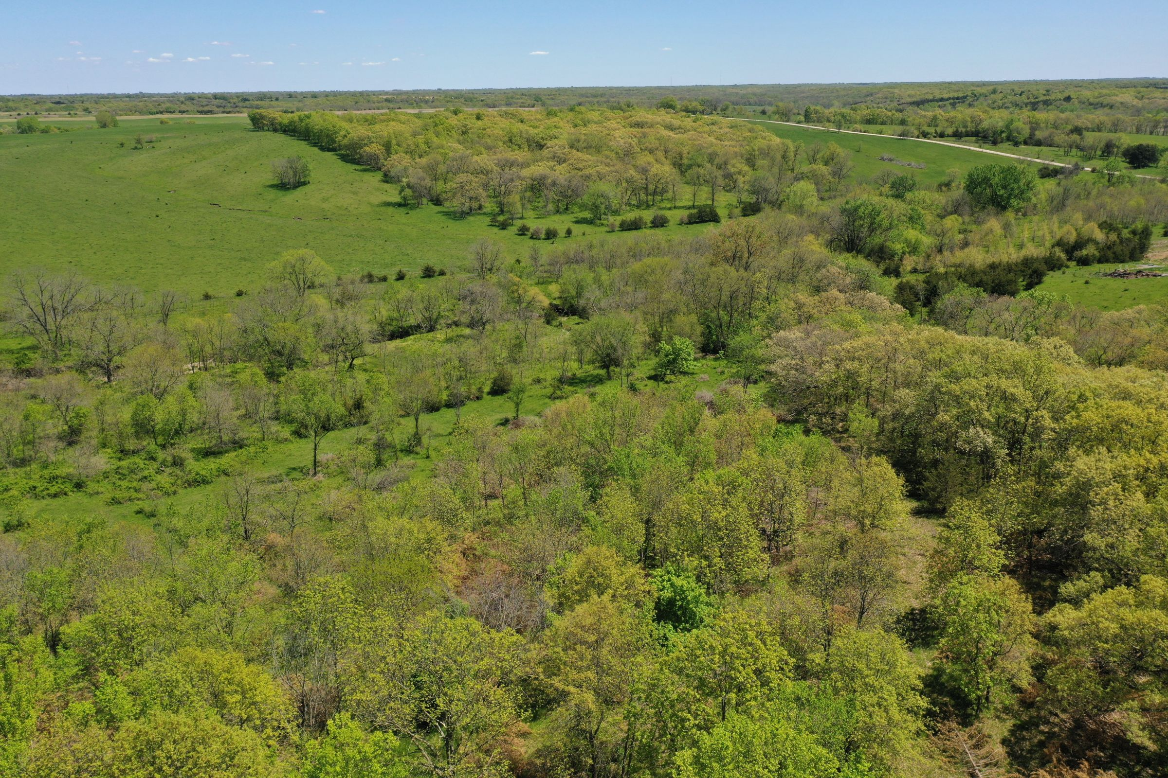 land-decatur-county-iowa-99-acres-listing-number-15525-1-2021-05-14-174317.JPG