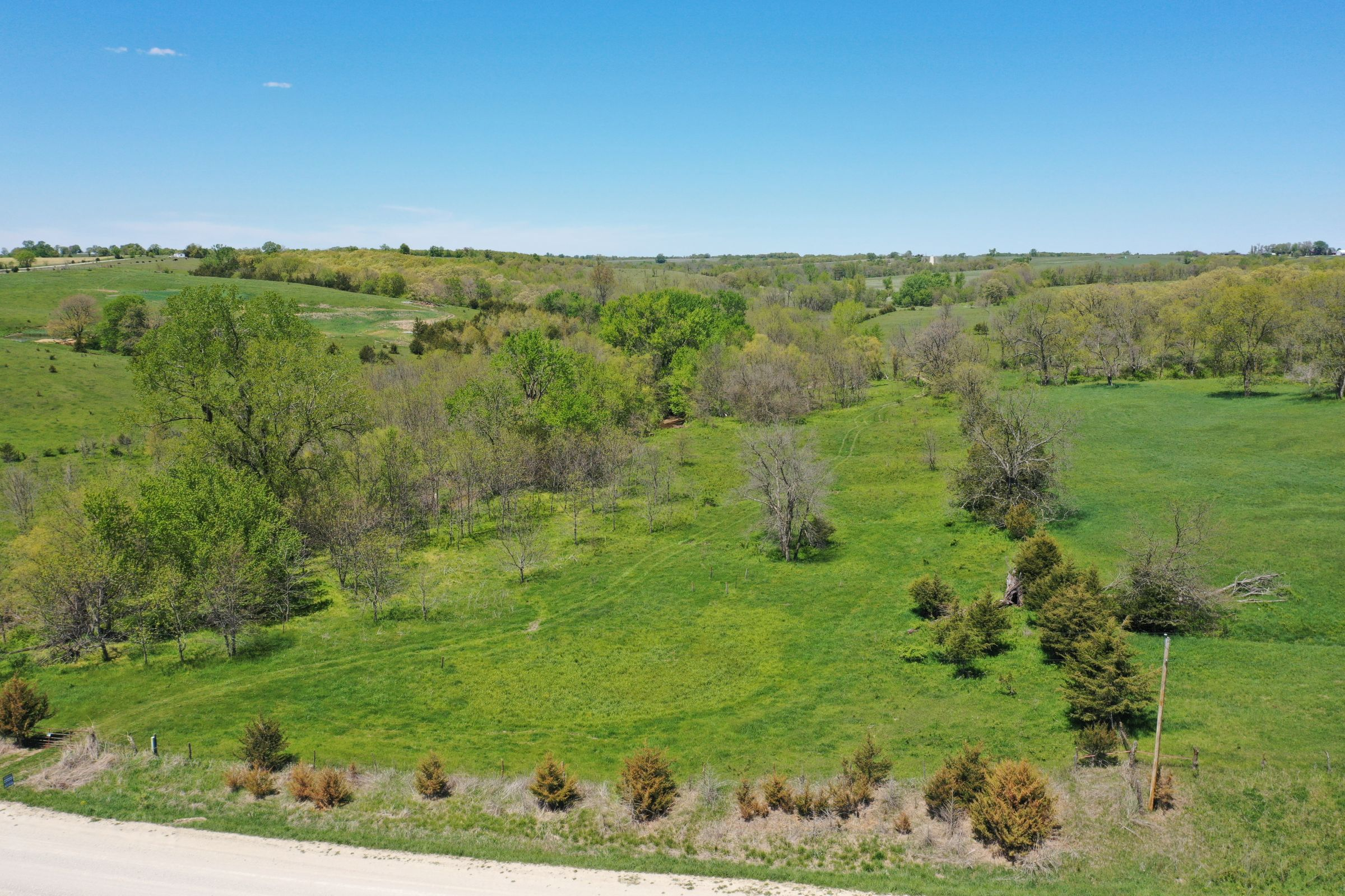 land-decatur-county-iowa-99-acres-listing-number-15525-2-2021-05-14-172508.JPG