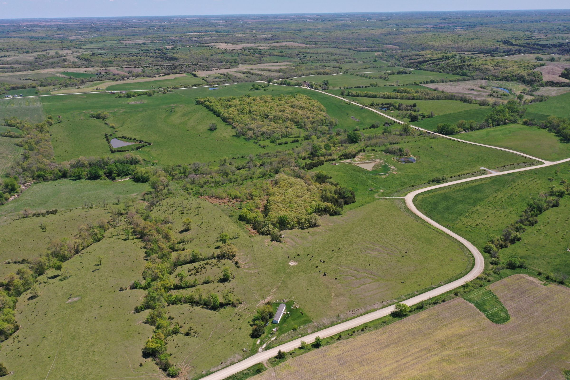 land-decatur-county-iowa-99-acres-listing-number-15525-2-2021-05-14-173509.JPG