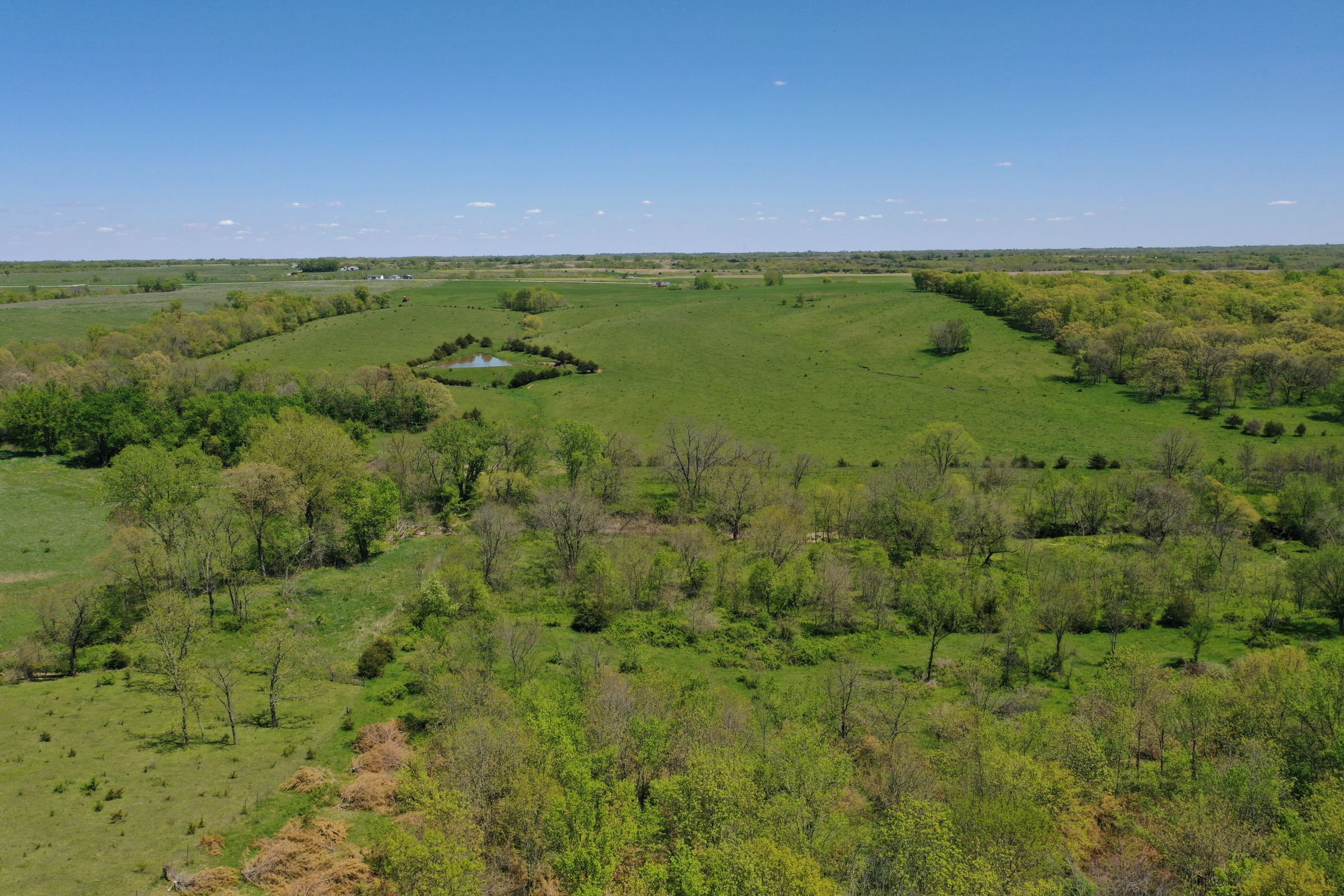 land-decatur-county-iowa-99-acres-listing-number-15525-2-2021-05-14-174318.JPG