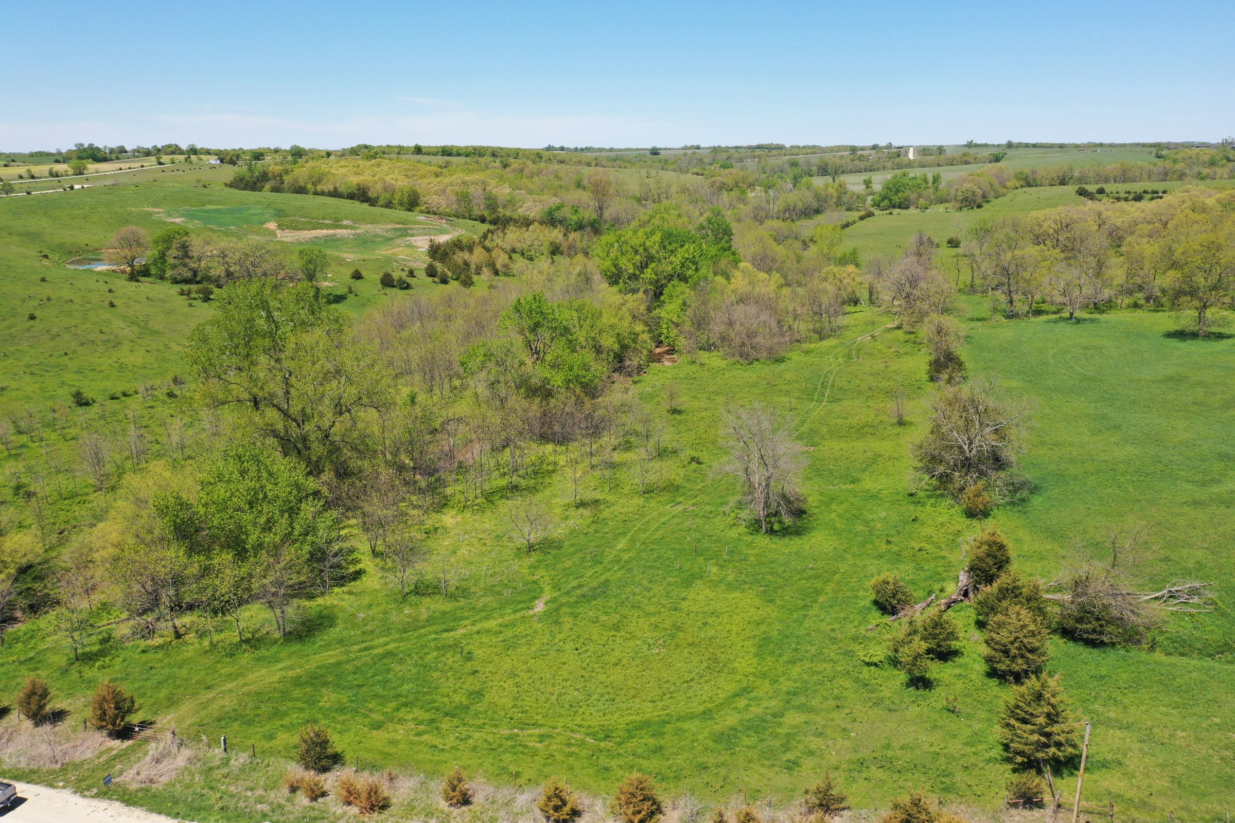 land-decatur-county-iowa-99-acres-listing-number-15525-3-2021-05-14-172510.JPG