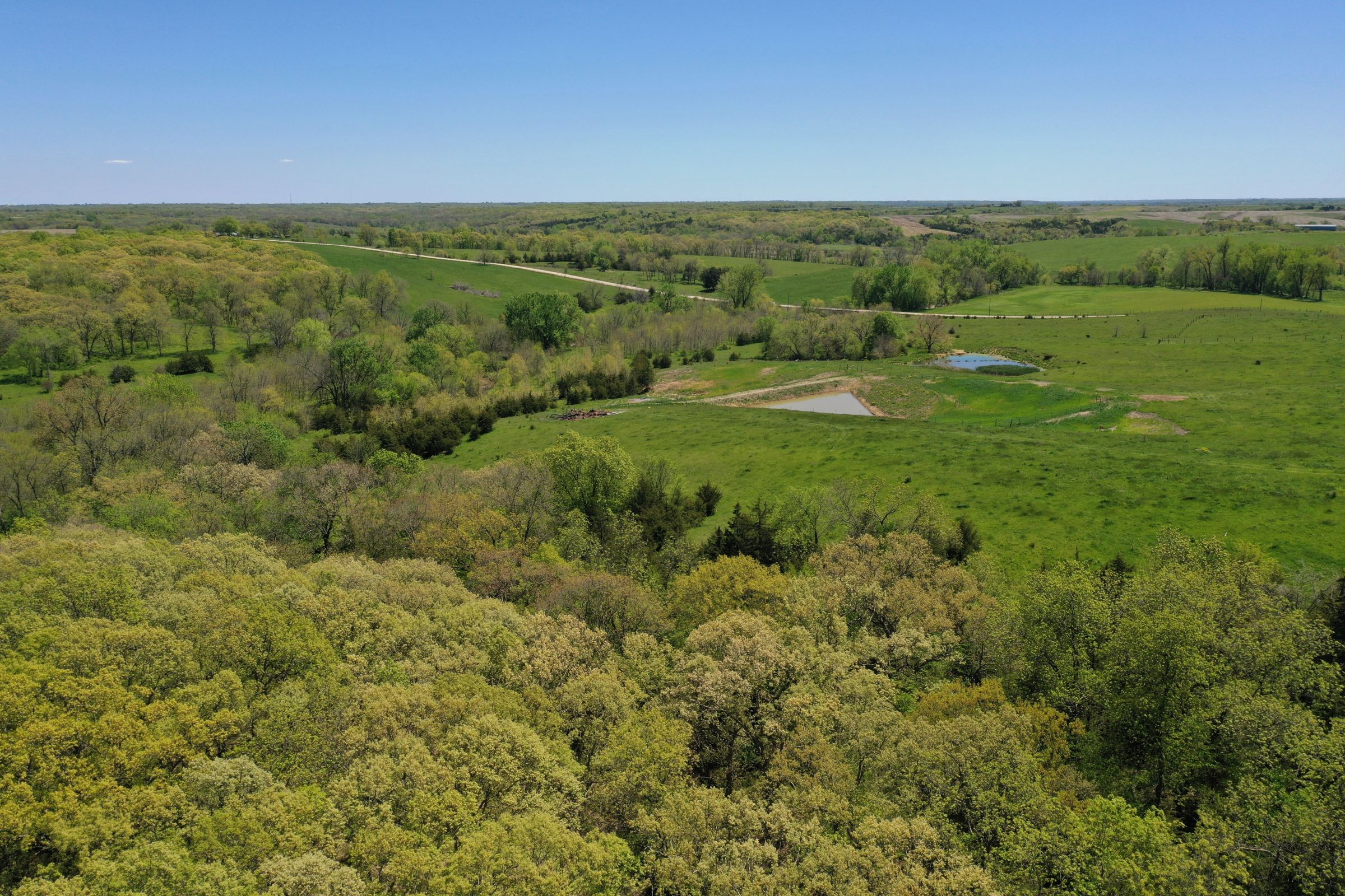 land-decatur-county-iowa-99-acres-listing-number-15525-3-2021-05-14-174320.JPG