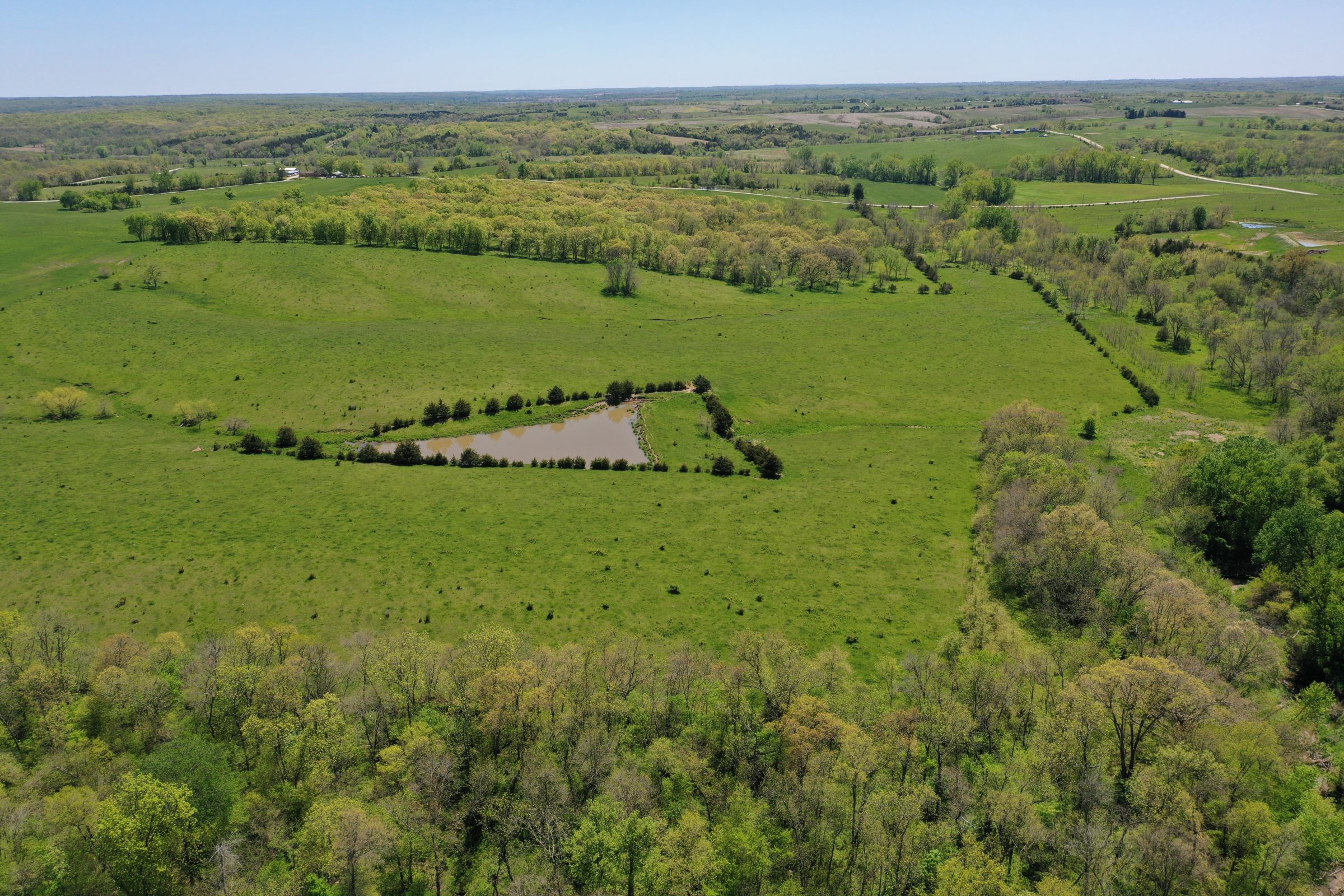 land-decatur-county-iowa-99-acres-listing-number-15525-3-2021-05-14-174542.JPG