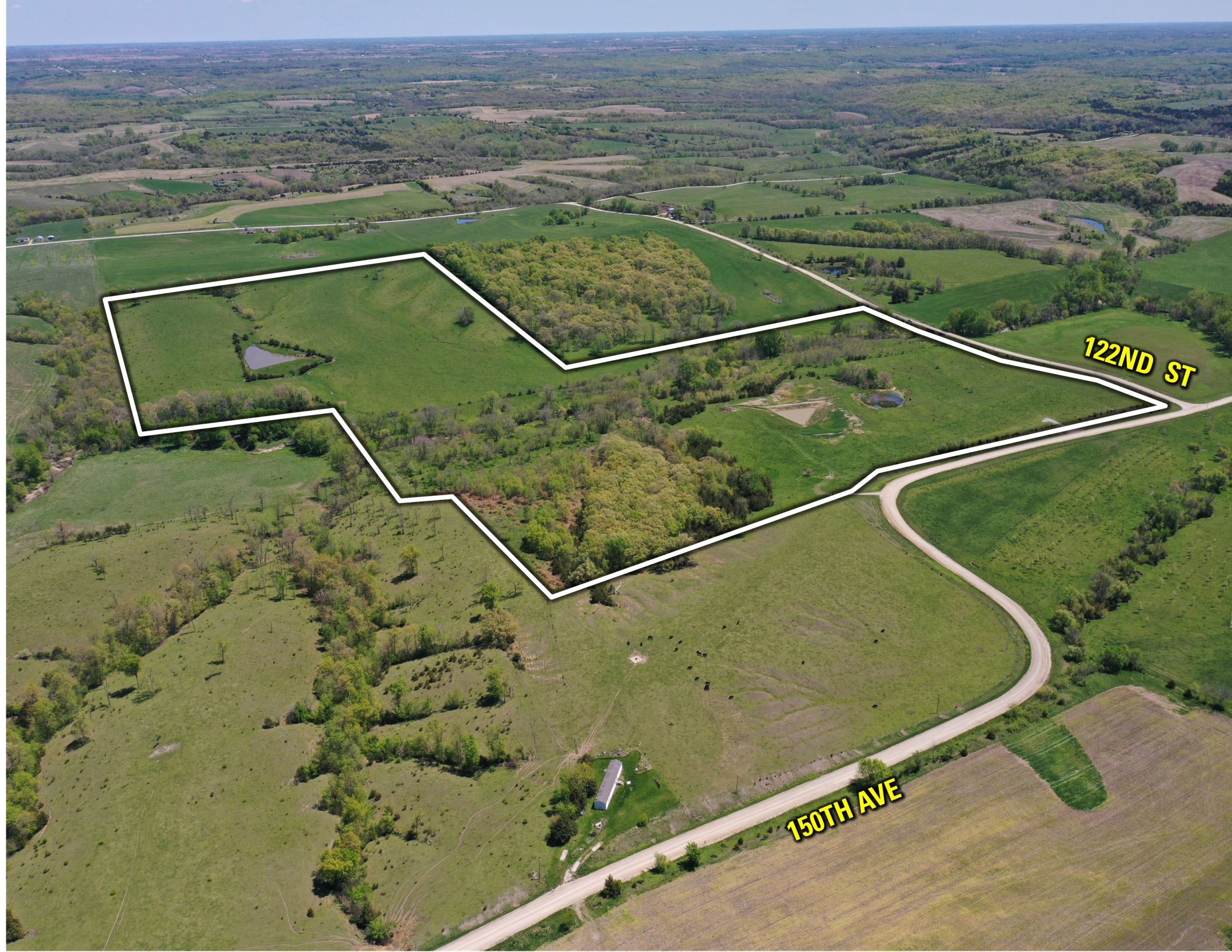 land-decatur-county-iowa-99-acres-listing-number-15525-4-2021-05-14-171819.jpg