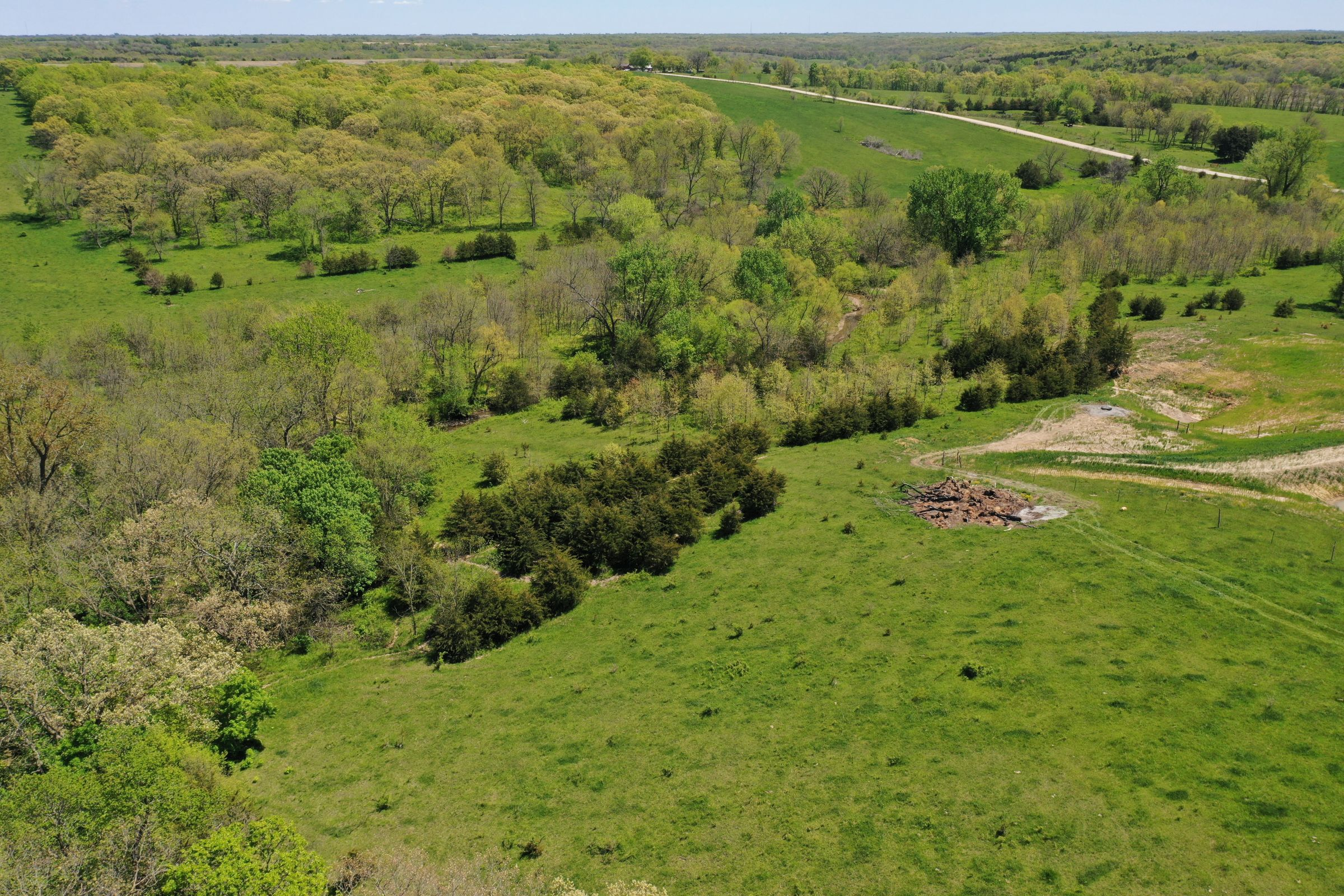 land-decatur-county-iowa-99-acres-listing-number-15525-4-2021-05-14-174321.JPG