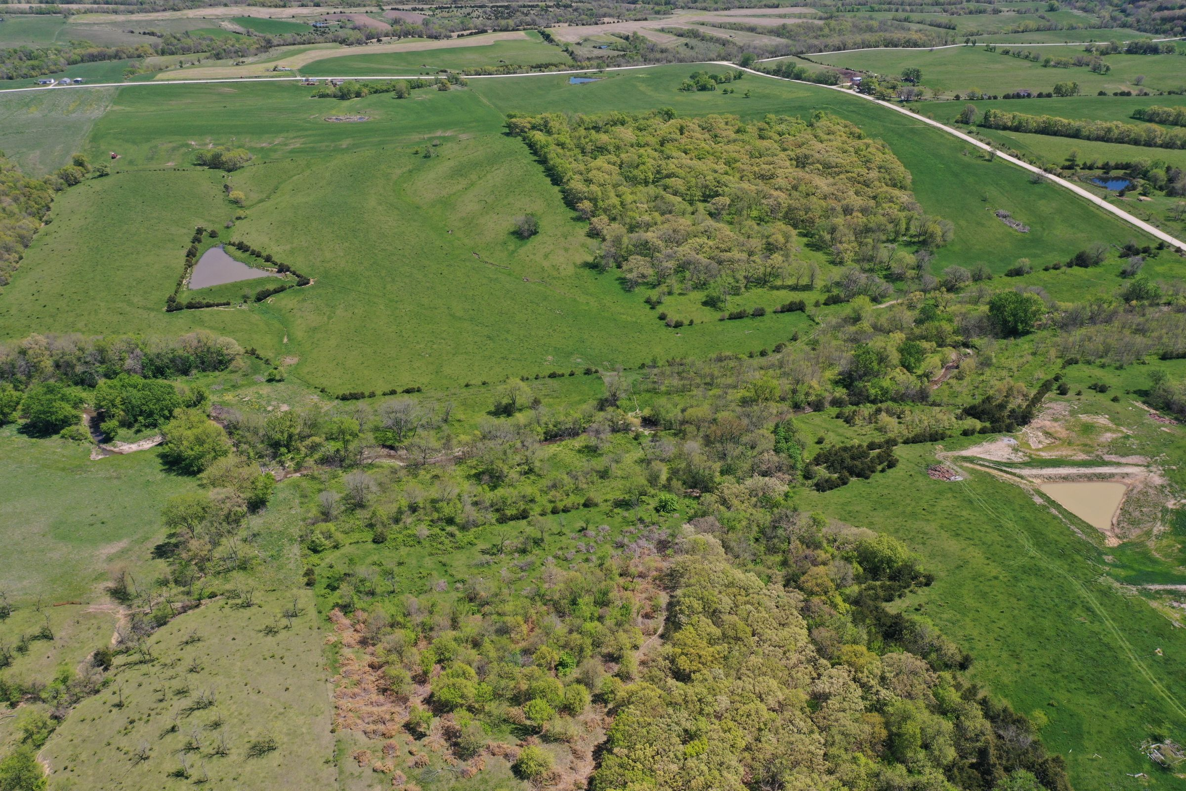 land-decatur-county-iowa-99-acres-listing-number-15525-5-2021-05-14-173514.JPG