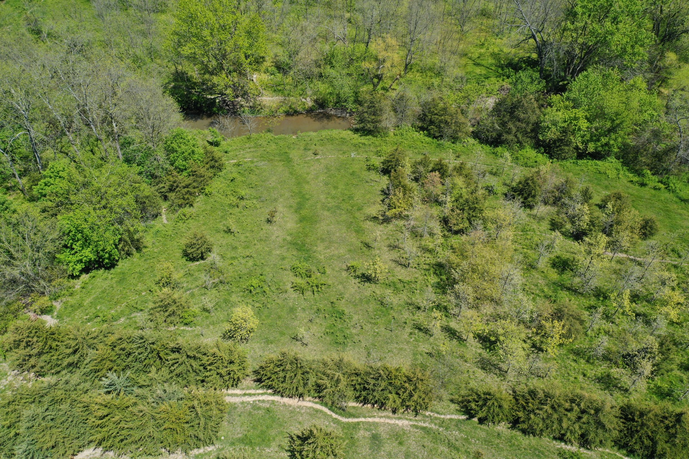 land-decatur-county-iowa-99-acres-listing-number-15525-5-2021-05-14-174323.JPG