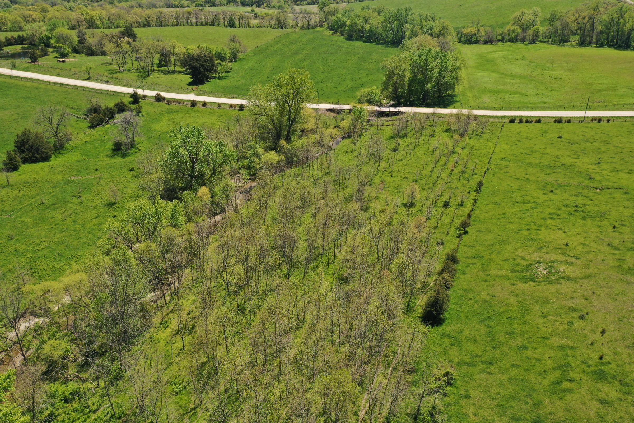 land-decatur-county-iowa-99-acres-listing-number-15525-6-2021-05-14-174325.JPG