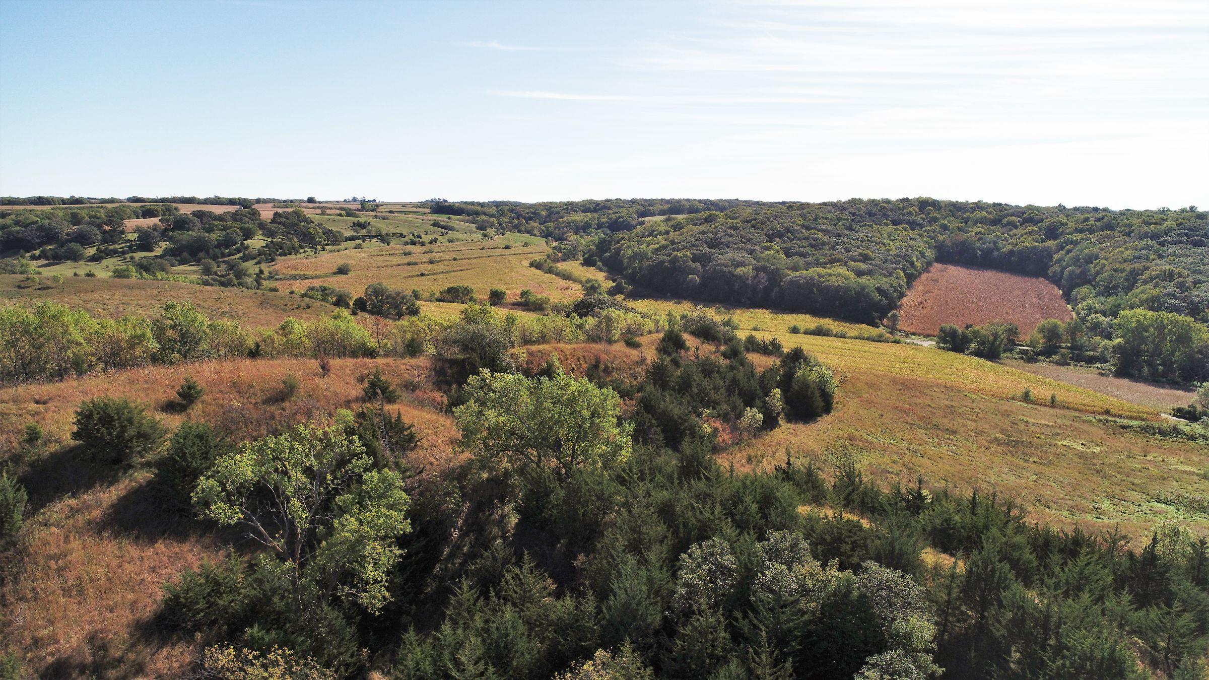 land-harrison-county-iowa-59-acres-listing-number-15527-0-2021-05-21-212625.JPG