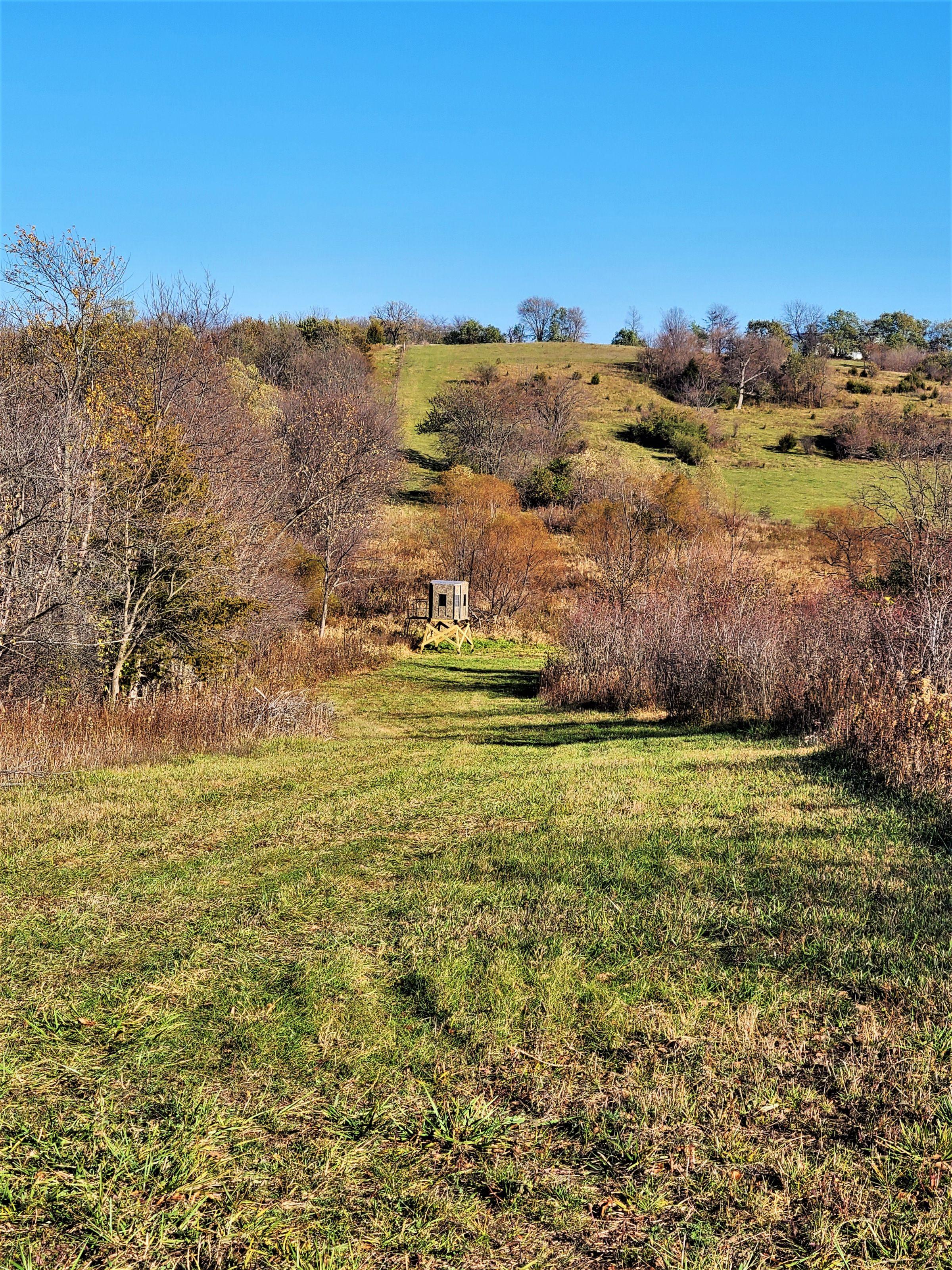 land-madison-county-iowa-71-acres-listing-number-15542-6-2021-08-05-185032.jpg