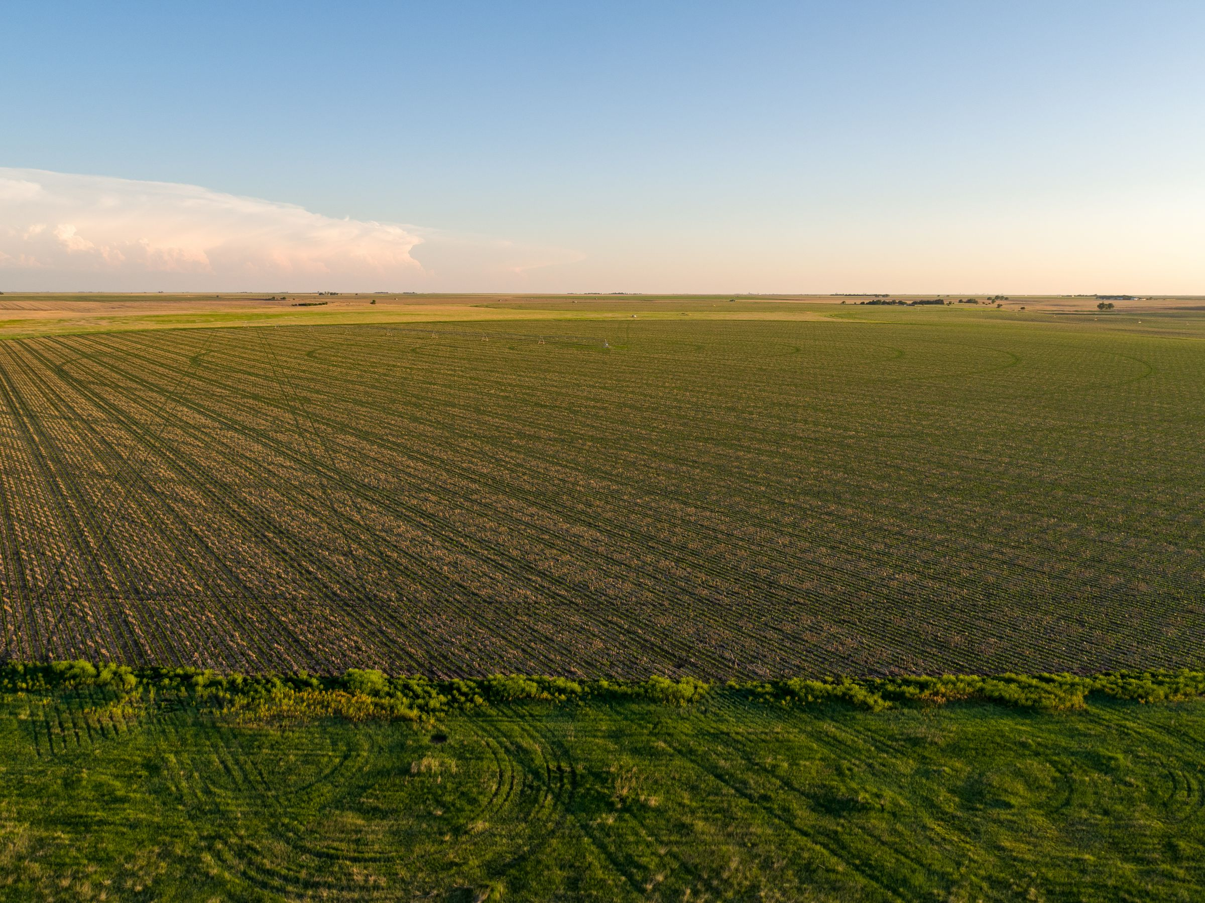 auctions-gray-haskell-county-kansas-2990-acres-listing-number-15570-0-2021-06-11-184112.jpeg