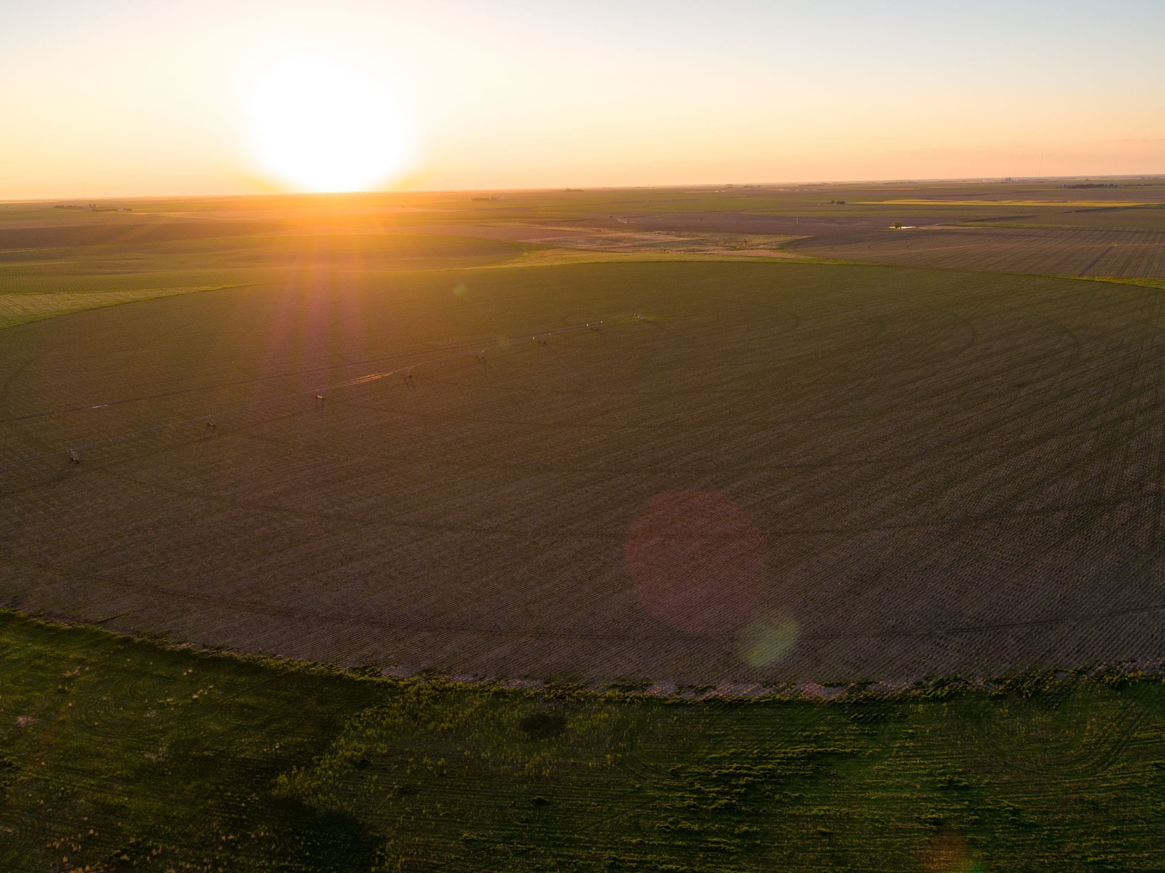 auctions-gray-haskell-county-kansas-2990-acres-listing-number-15570-1-2021-06-11-184113.jpeg