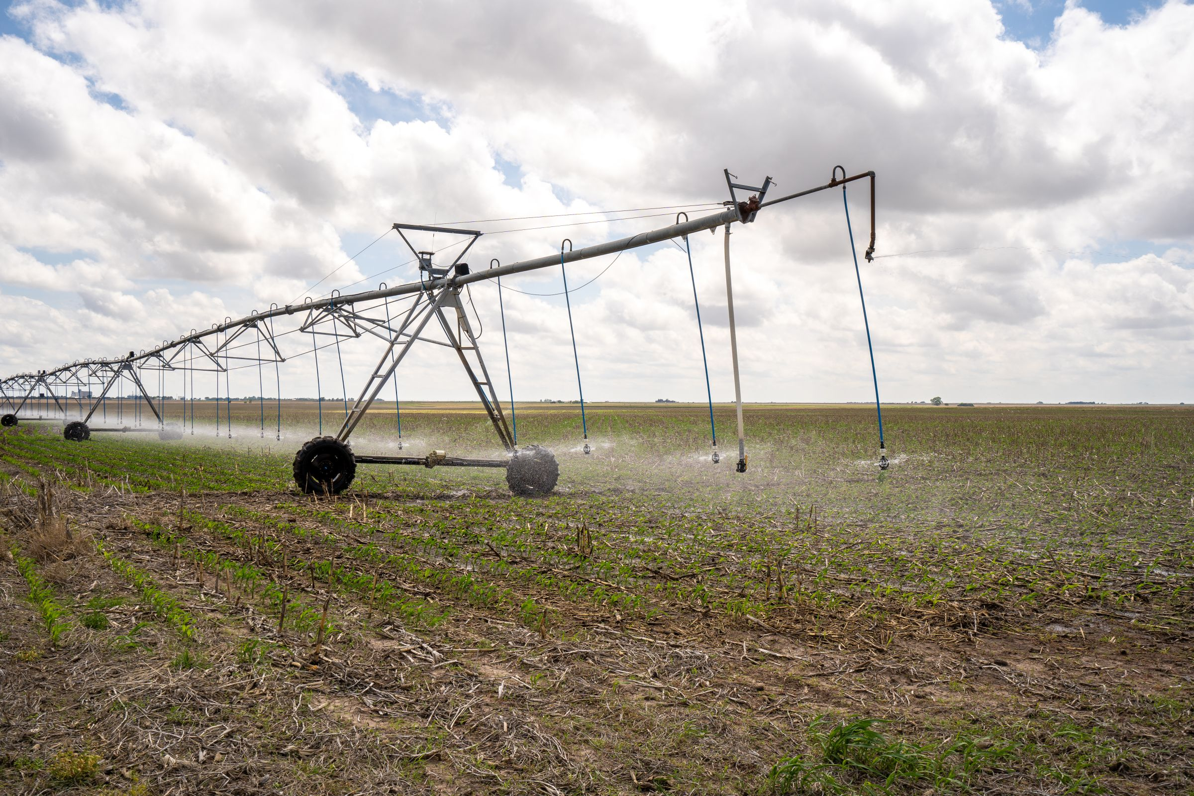 auctions-gray-haskell-county-kansas-2990-acres-listing-number-15570-1-2021-06-11-184225.jpeg