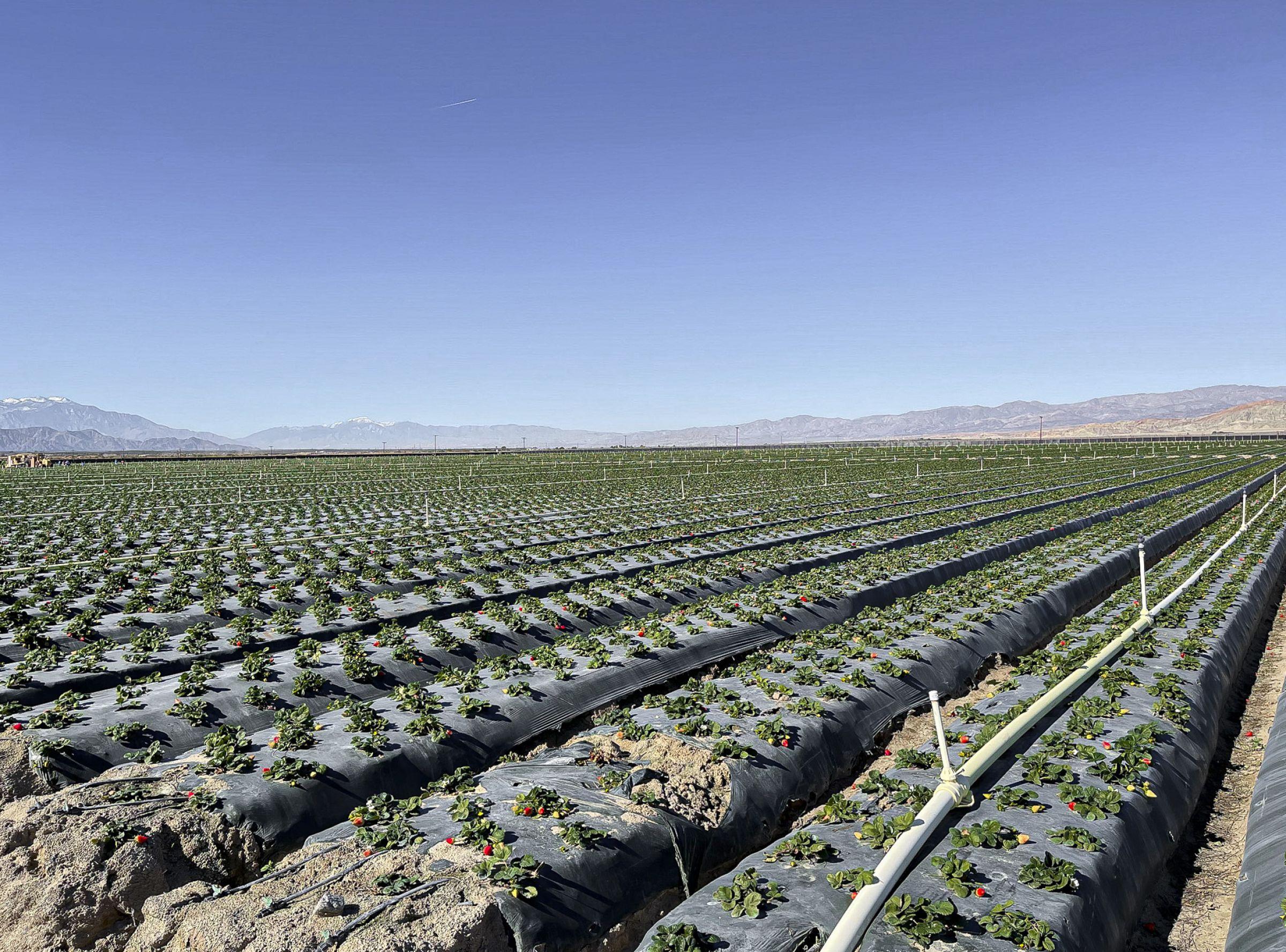 land-riverside-county-california-157-acres-listing-number-15582-2-2021-06-10-155632.jpg
