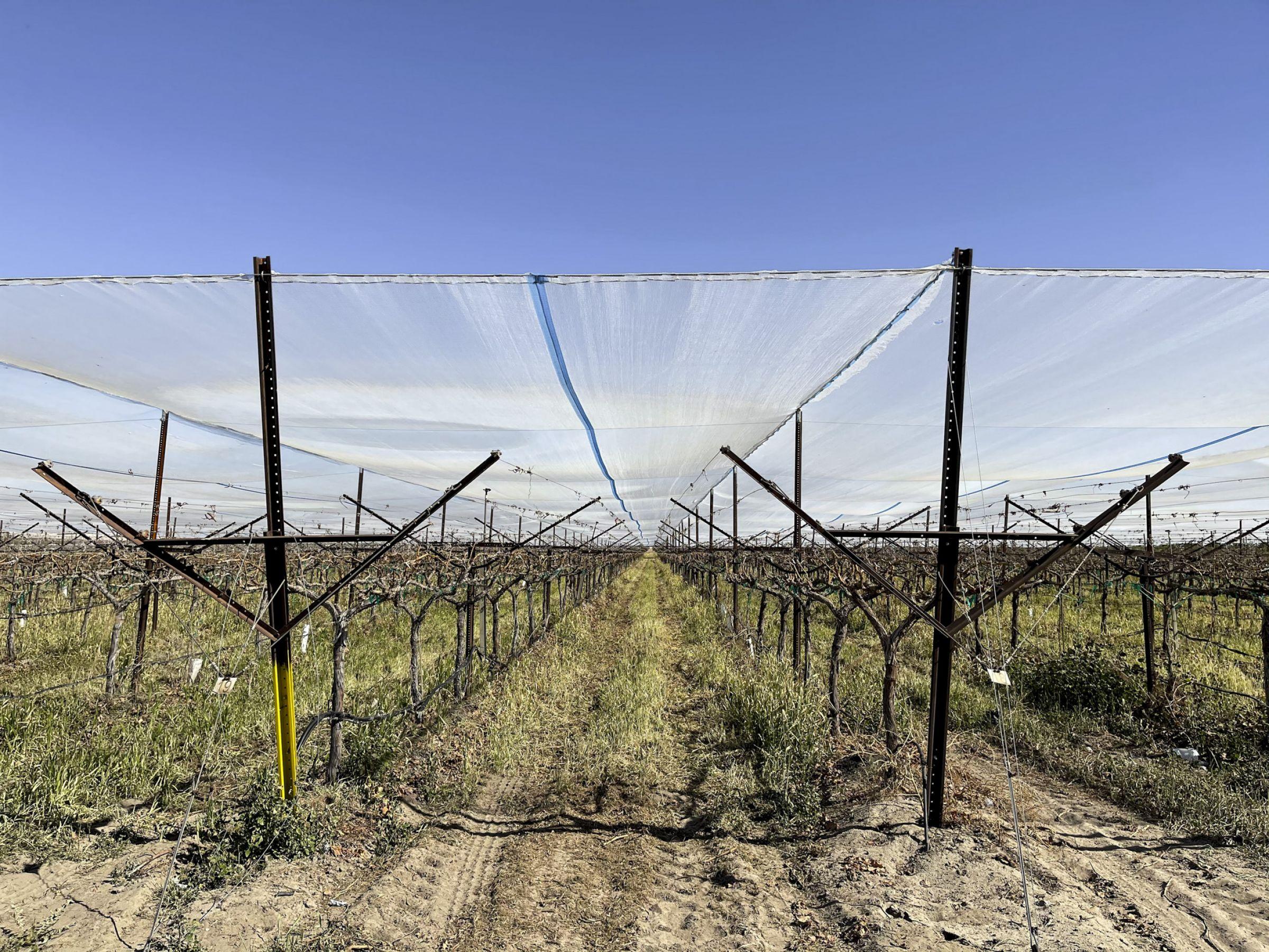 land-riverside-county-california-160-acres-listing-number-15583-2-2021-06-10-175653.jpg