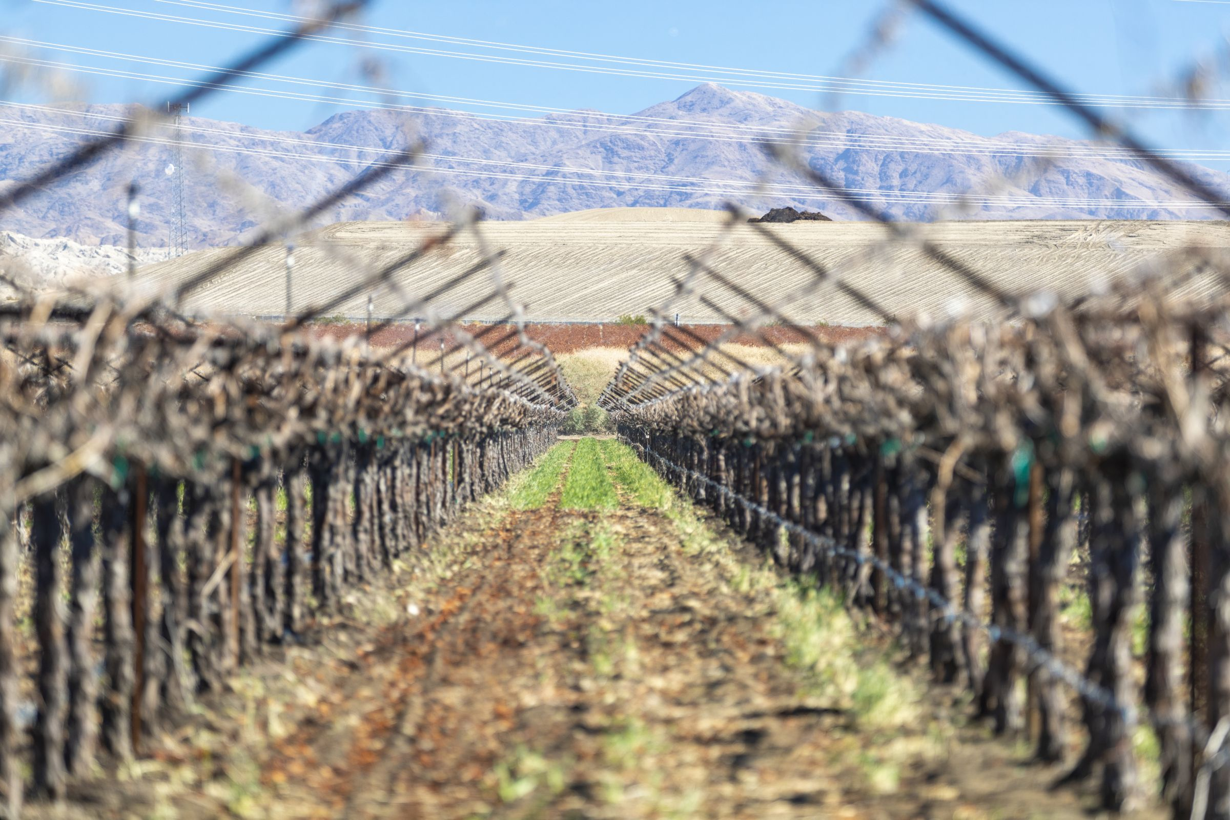 land-riverside-county-california-139-acres-listing-number-15584-0-2021-06-10-181413.jpg