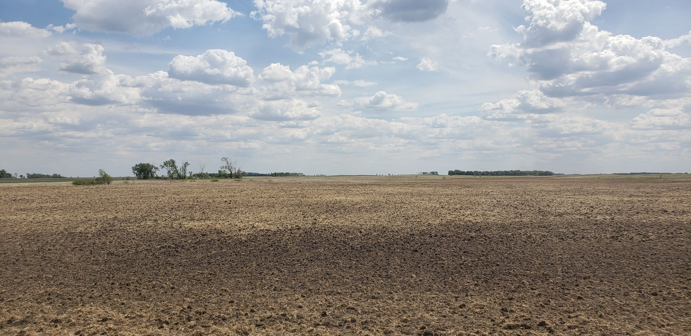 auctions-cass-county-north-dakota-320-acres-listing-number-15590-0-2021-06-22-191128.jpg