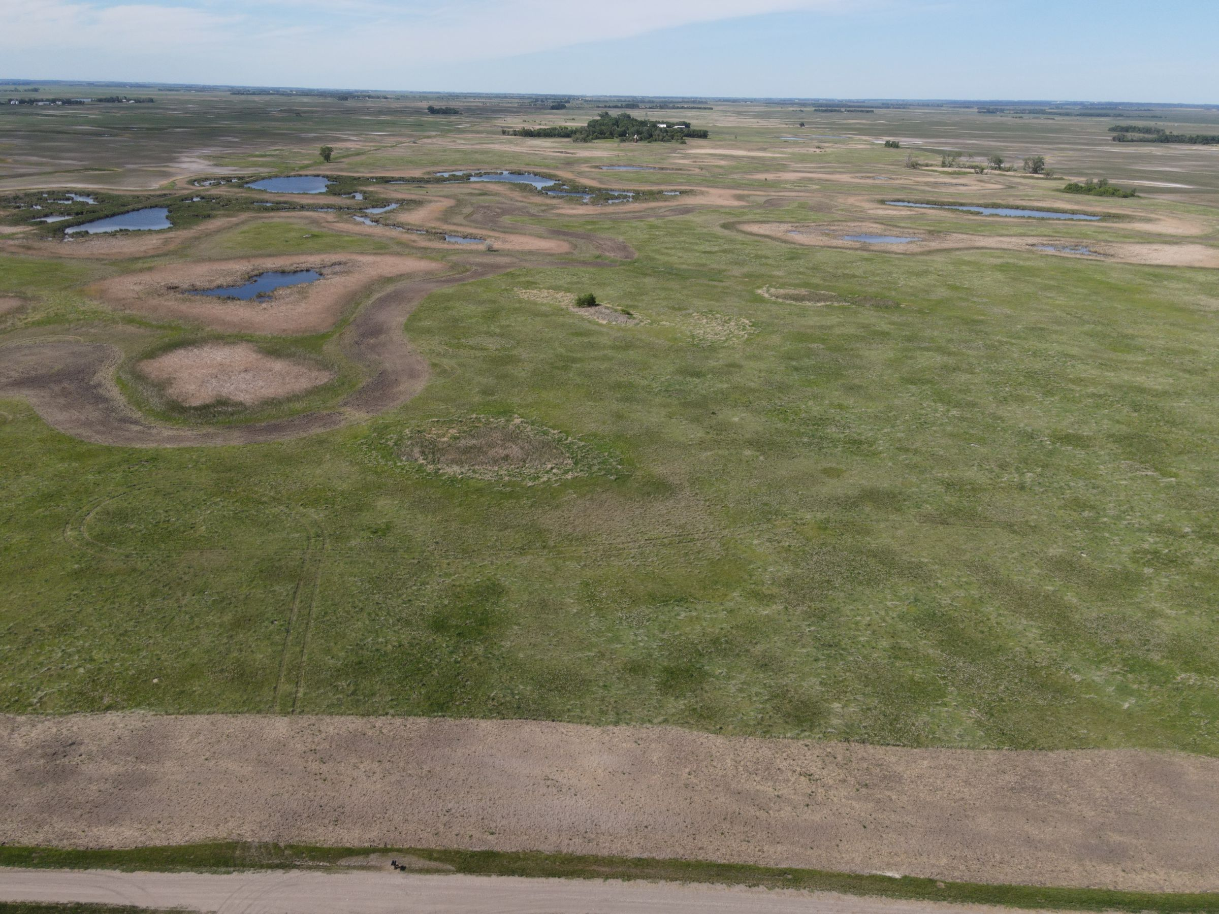 auctions-cass-county-north-dakota-320-acres-listing-number-15590-0-2021-06-22-191227.JPG