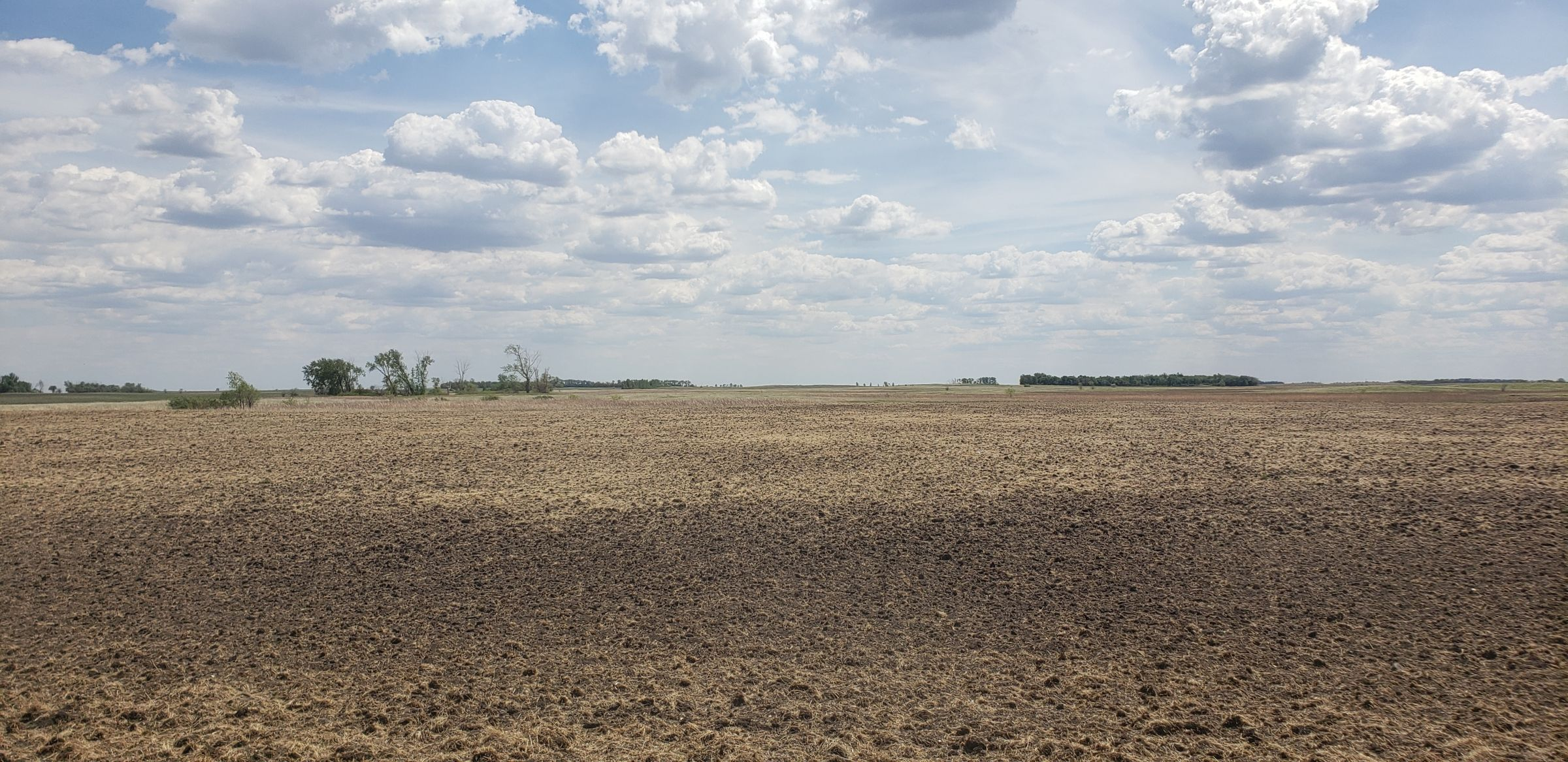 auctions-cass-county-north-dakota-320-acres-listing-number-15590-1-2021-06-22-191129.jpg
