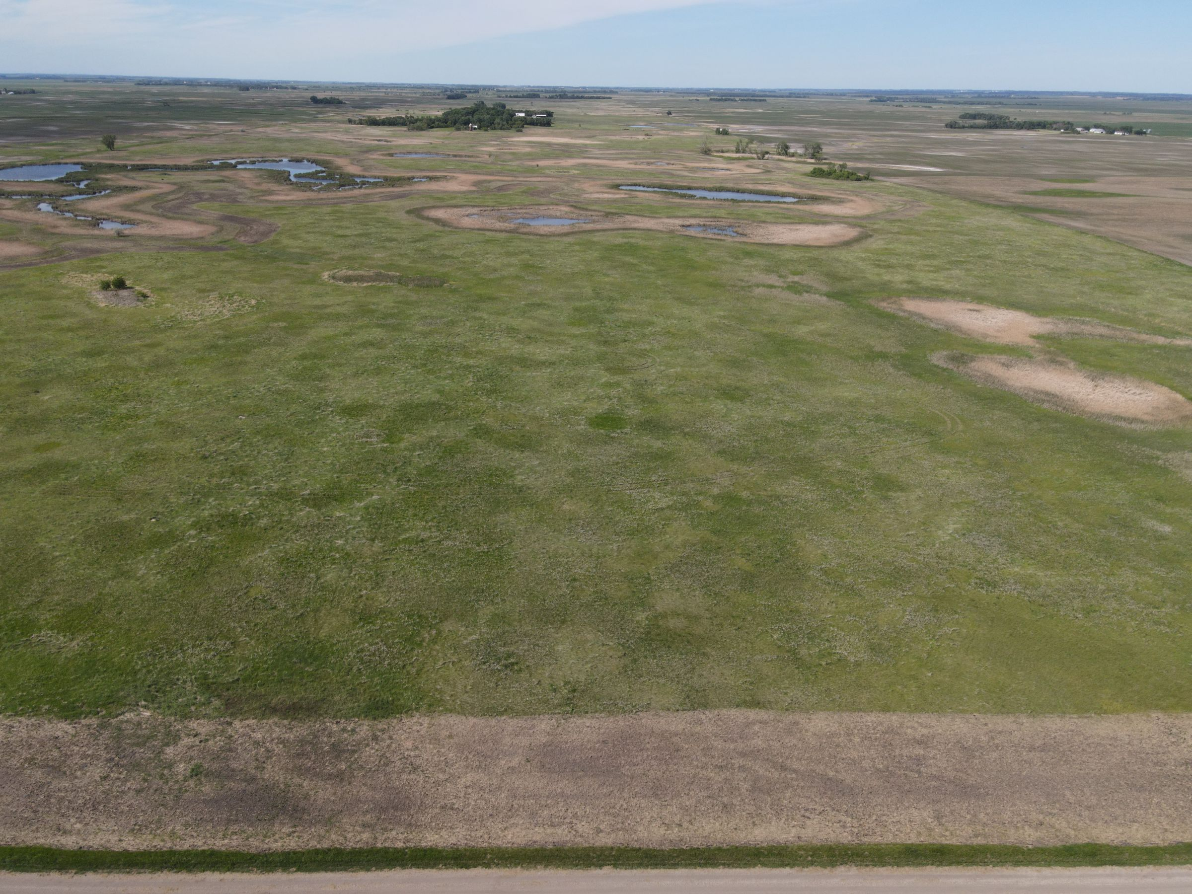 auctions-cass-county-north-dakota-320-acres-listing-number-15590-1-2021-06-22-191230.JPG