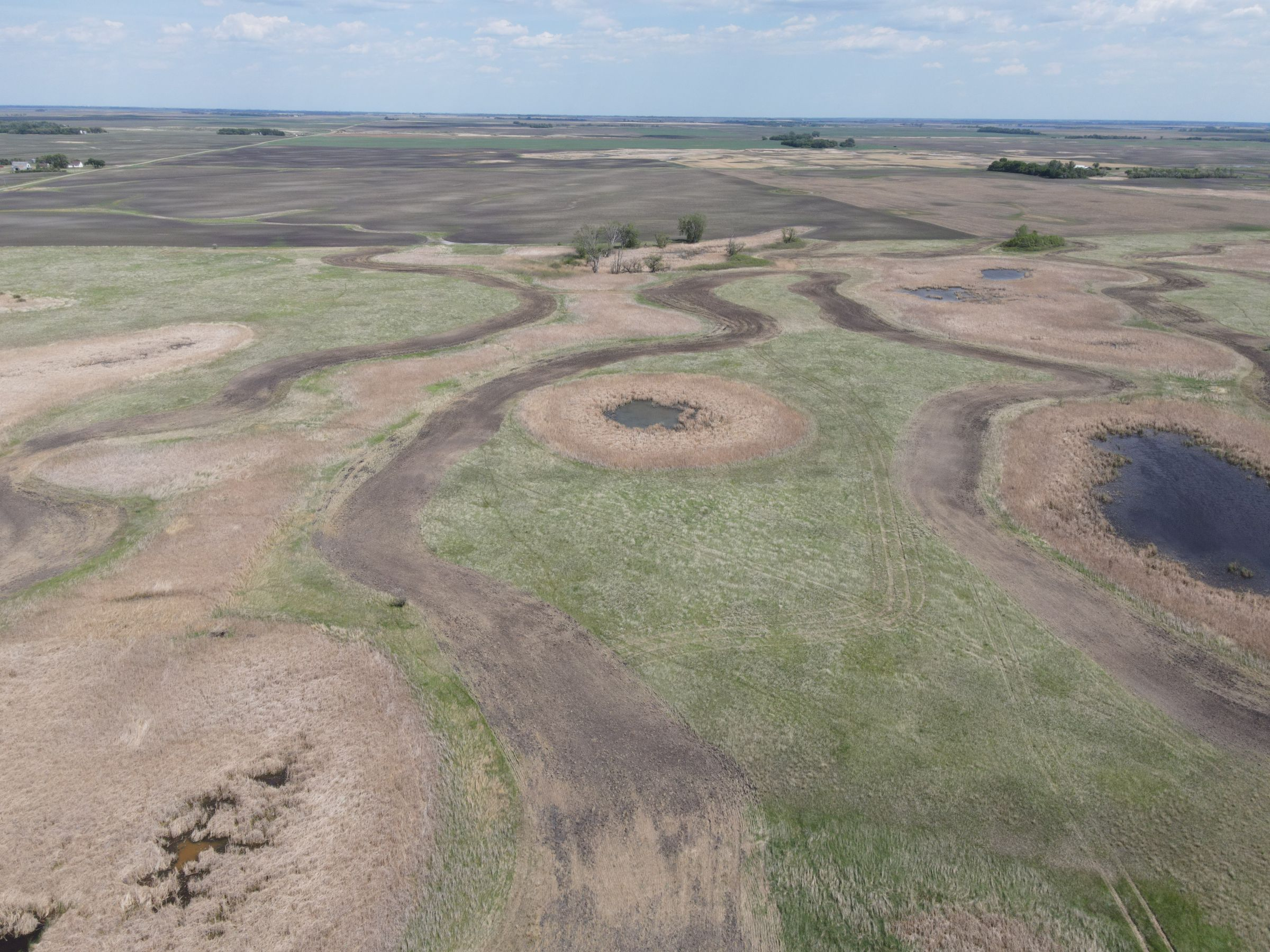 auctions-cass-county-north-dakota-320-acres-listing-number-15590-2-2021-06-22-191036.JPG