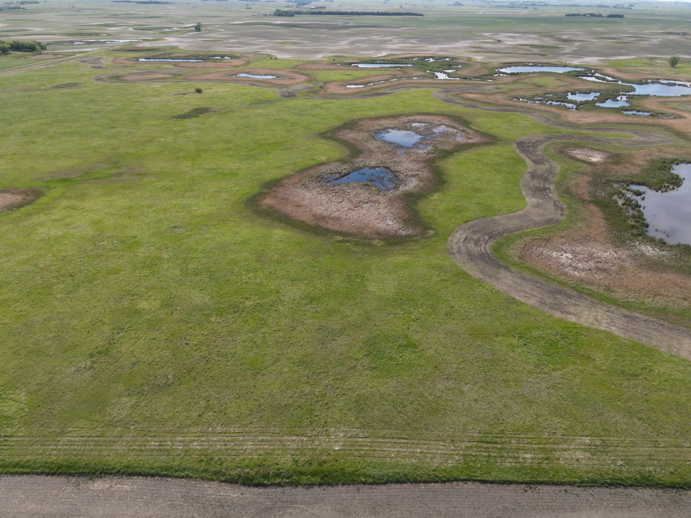 auctions-cass-county-north-dakota-320-acres-listing-number-15590-2-2021-06-22-191233.JPG