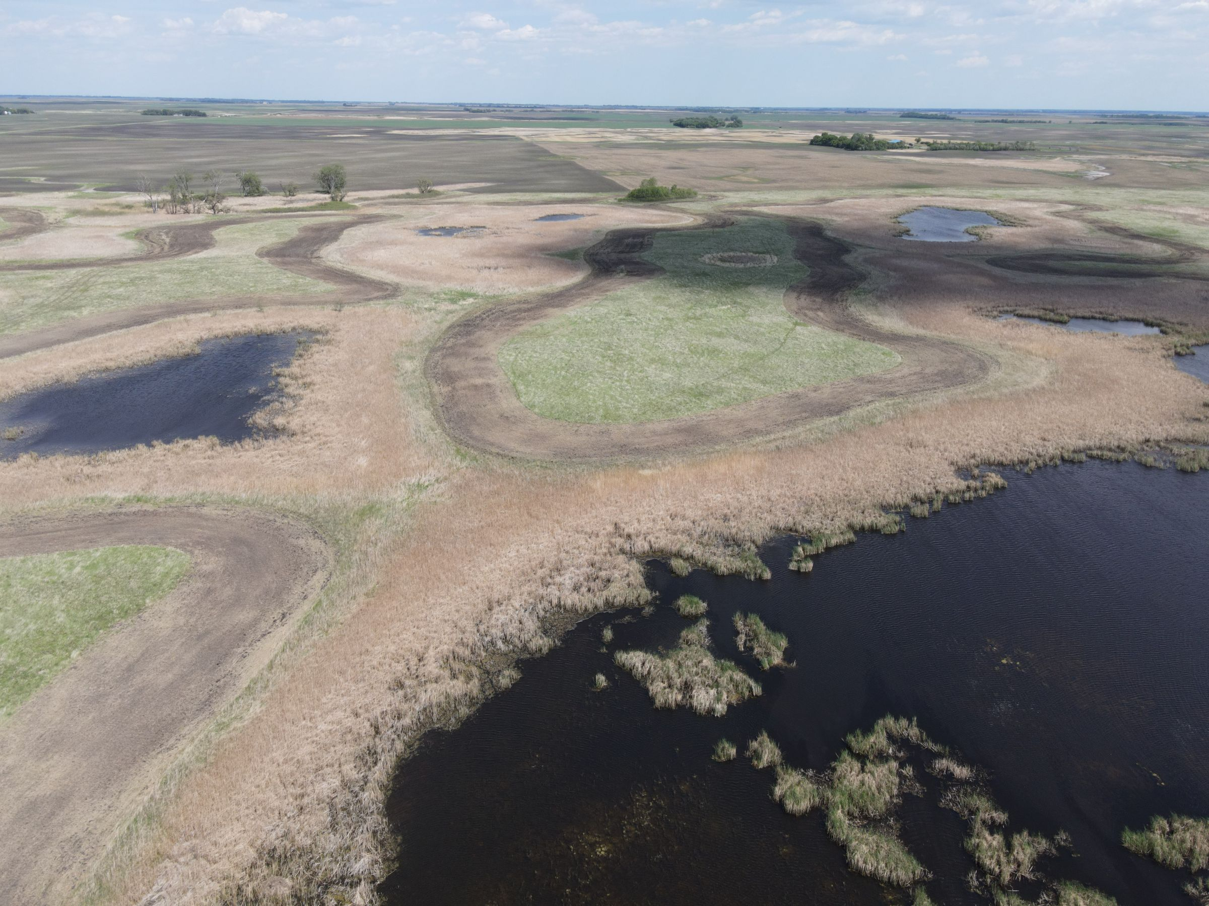 auctions-cass-county-north-dakota-320-acres-listing-number-15590-3-2021-06-22-191039.JPG
