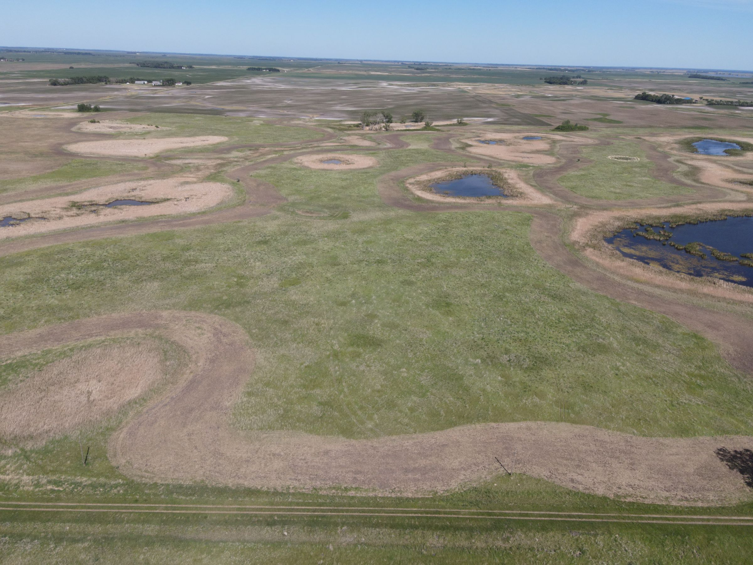 auctions-cass-county-north-dakota-320-acres-listing-number-15590-3-2021-06-22-191133.JPG