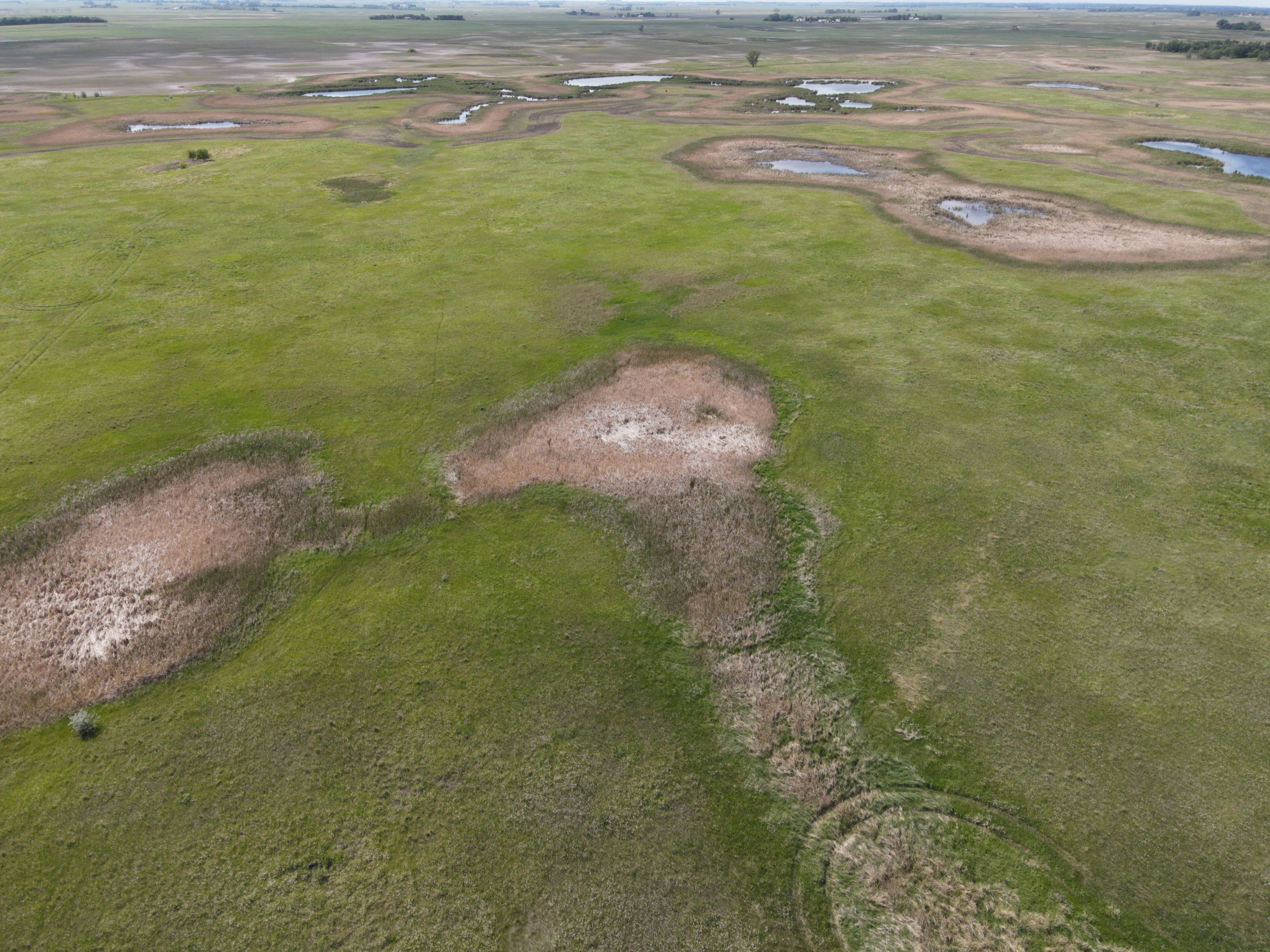 auctions-cass-county-north-dakota-320-acres-listing-number-15590-3-2021-06-22-191236.JPG