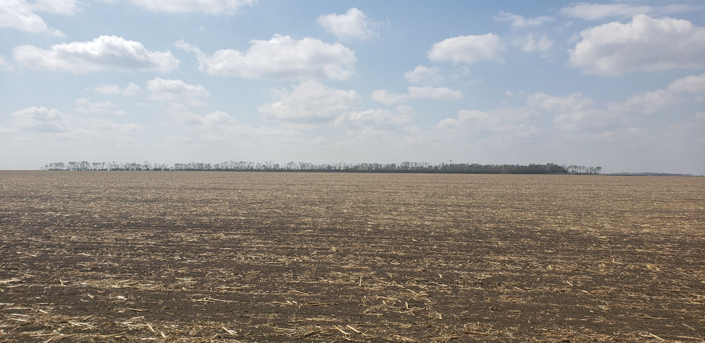 auctions-cass-county-north-dakota-157-acres-listing-number-15592-0-2021-06-16-180750.jpg