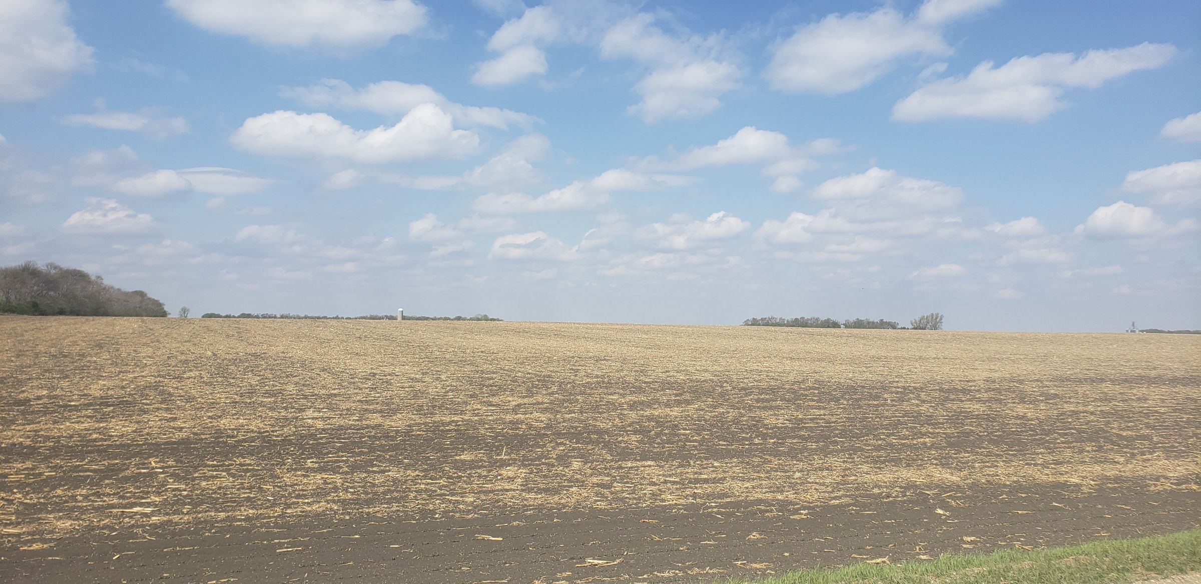 auctions-cass-county-north-dakota-157-acres-listing-number-15592-0-2021-06-16-180841.jpg