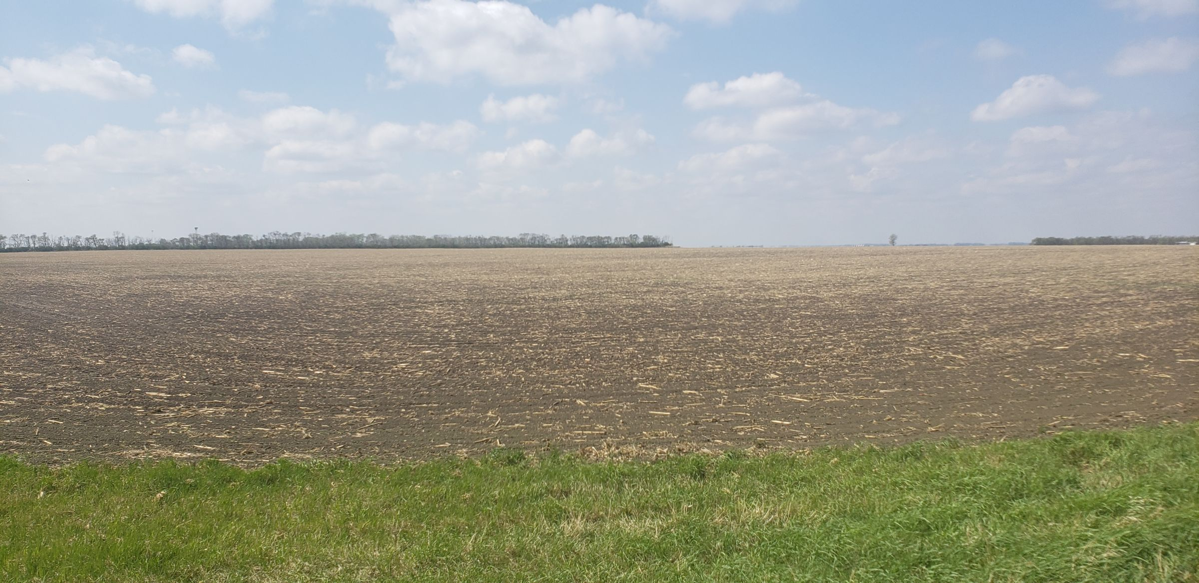 auctions-cass-county-north-dakota-157-acres-listing-number-15592-2-2021-06-16-180842.jpg