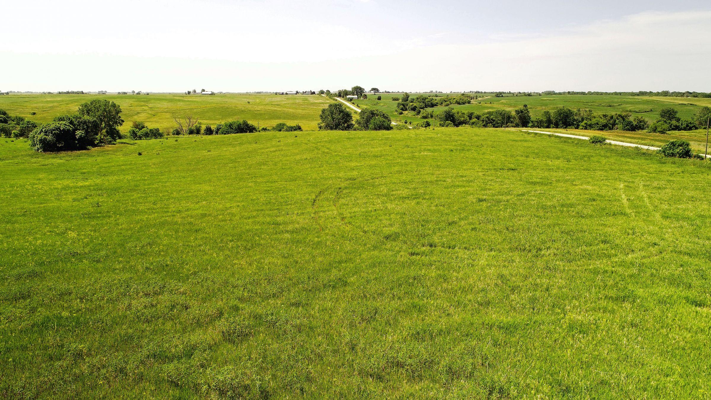 land-iowa-38-acres-listing-number-15594-0-2021-06-16-212122.JPG