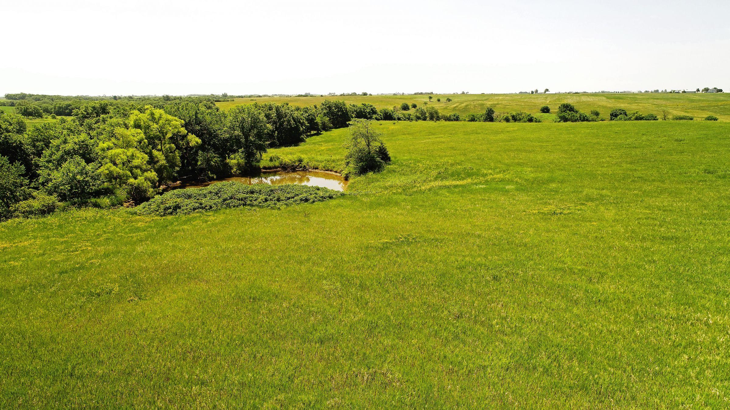 land-iowa-38-acres-listing-number-15594-1-2021-06-16-212123.JPG