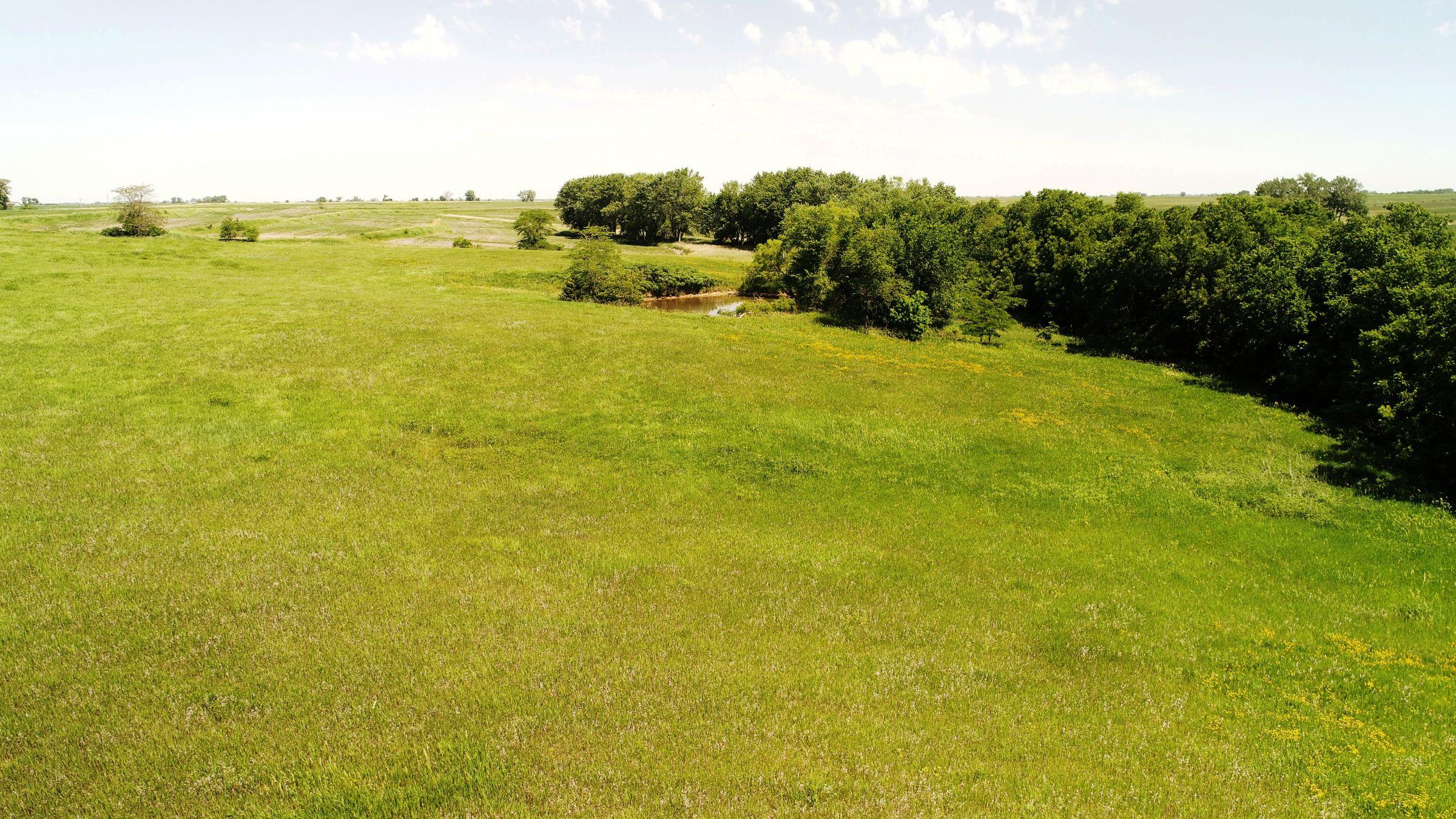 land-iowa-38-acres-listing-number-15594-2-2021-06-16-212125.JPG