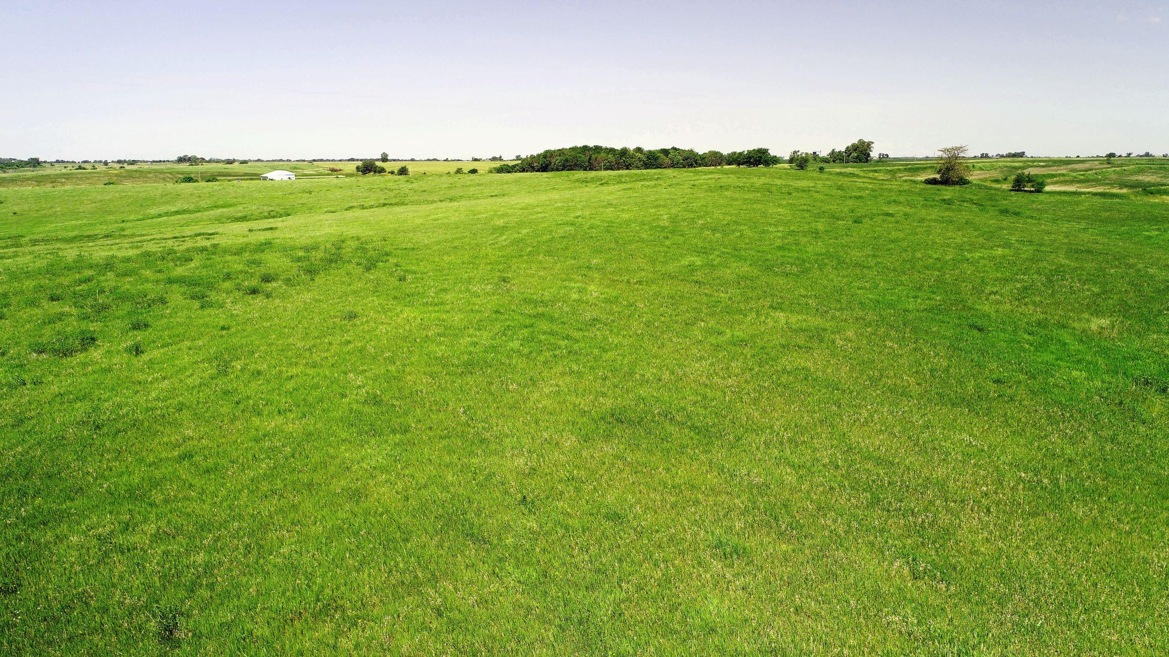 land-iowa-38-acres-listing-number-15594-3-2021-06-16-212128.JPG