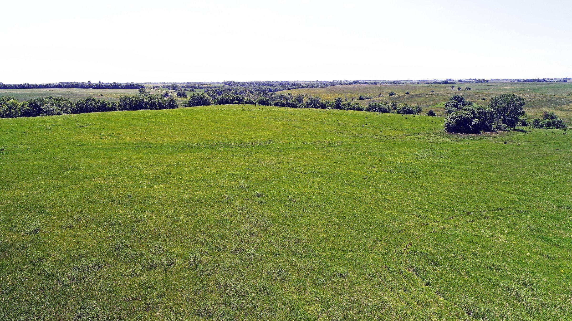 land-iowa-38-acres-listing-number-15594-4-2021-06-16-212129.JPG