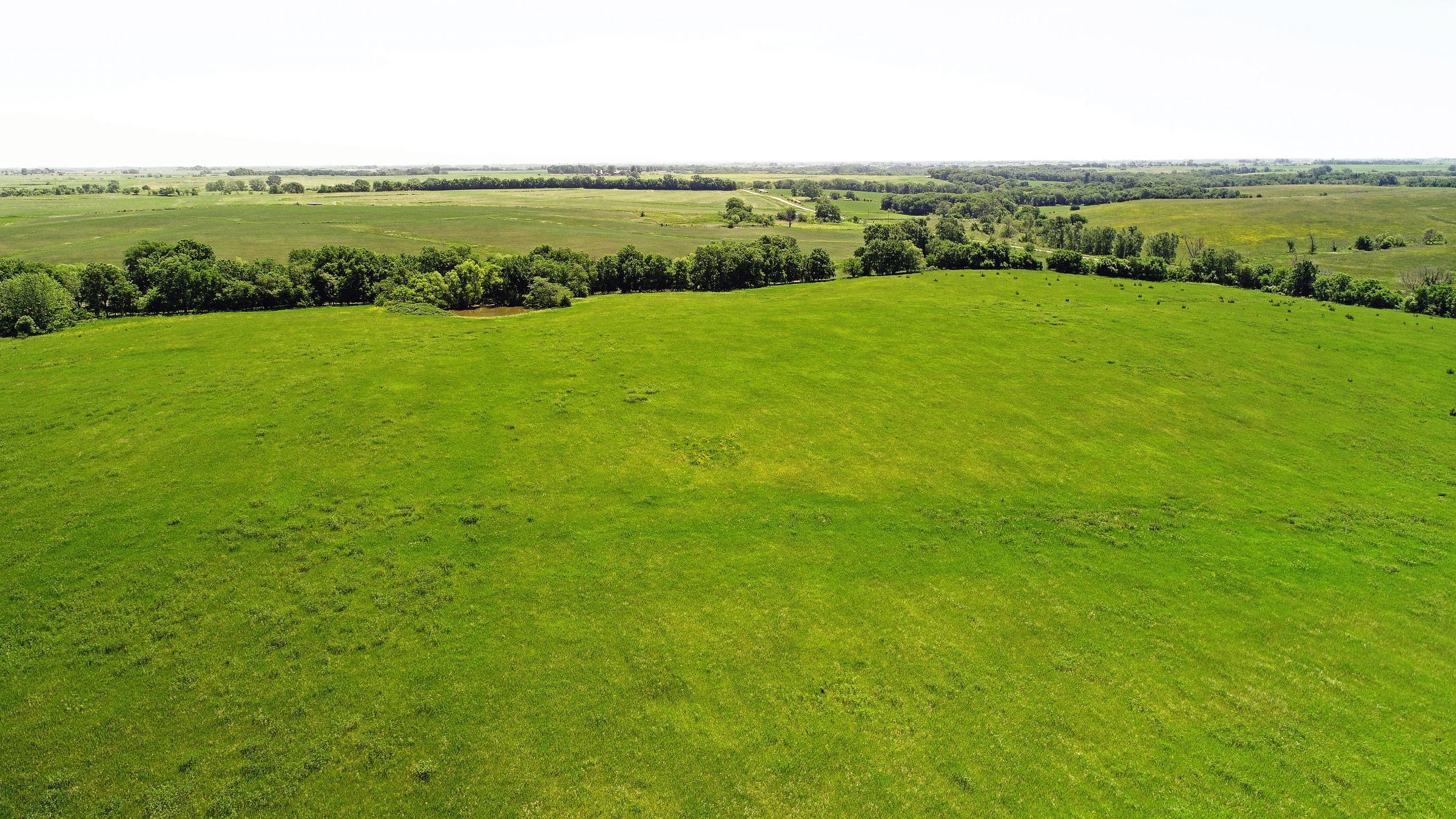 land-iowa-38-acres-listing-number-15594-5-2021-06-16-202800.JPG