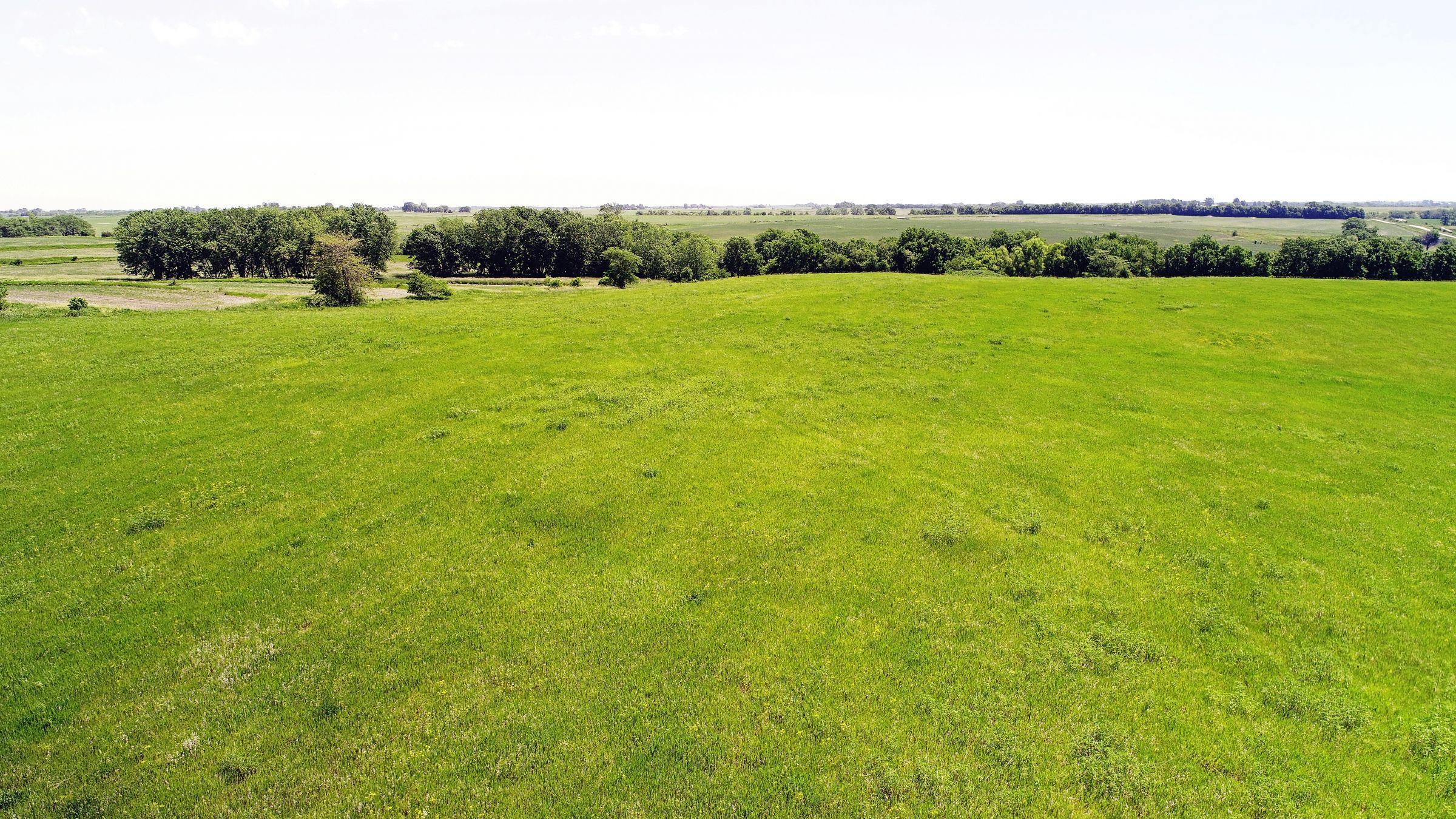 land-iowa-38-acres-listing-number-15594-5-2021-06-16-212131.JPG
