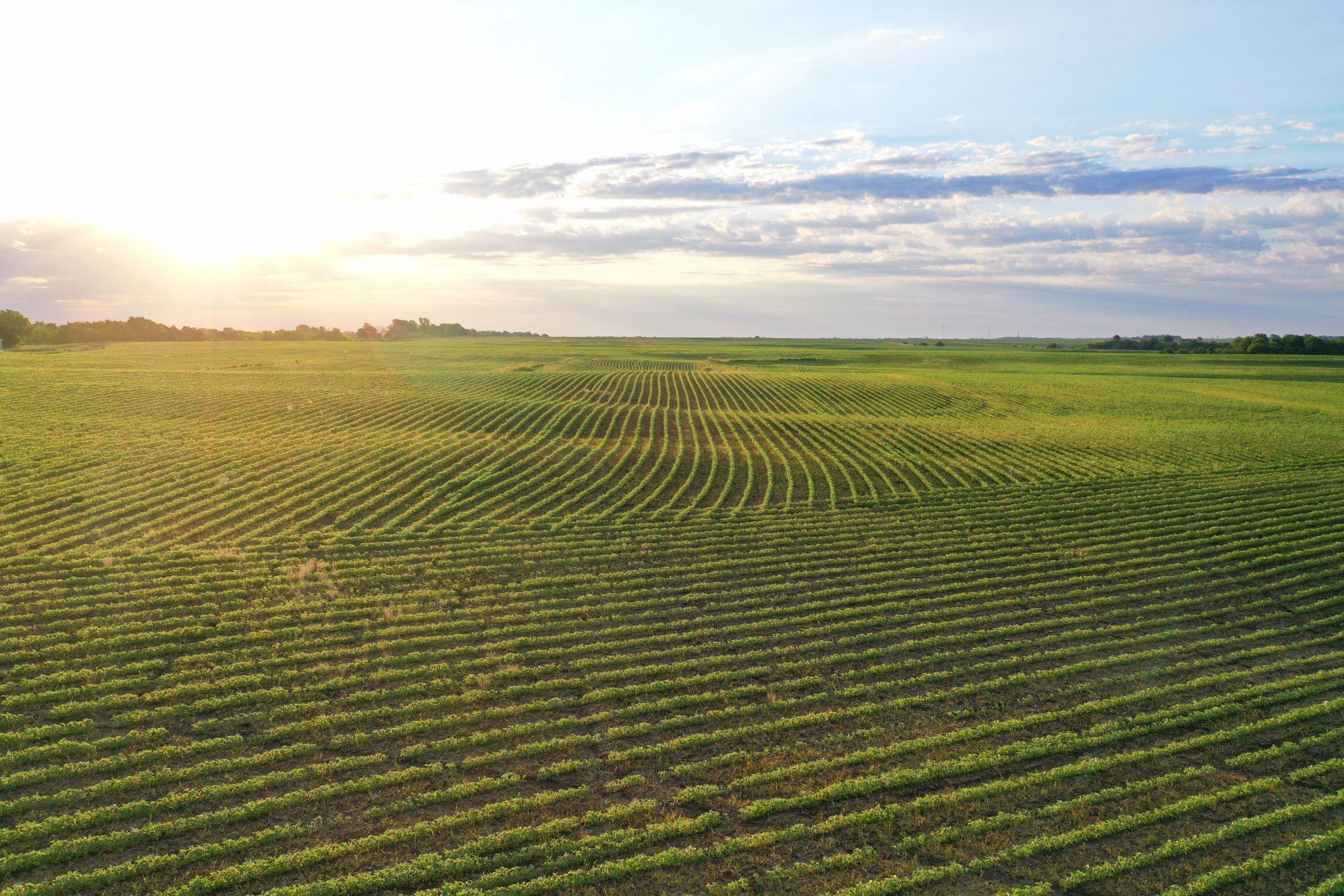 land-clarke-county-iowa-883-acres-listing-number-15596-10-2021-06-23-163324.jpg