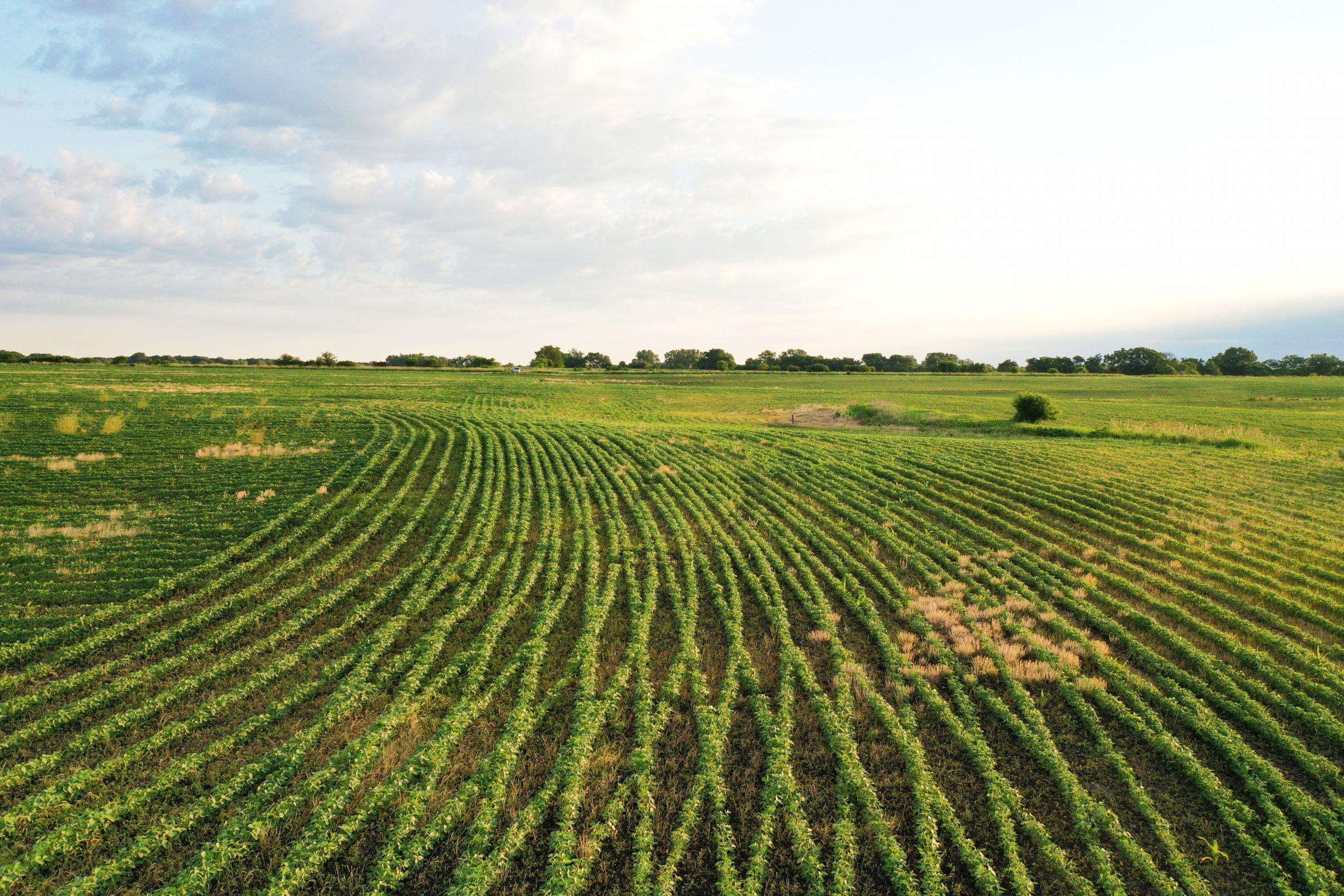 land-clarke-county-iowa-883-acres-listing-number-15596-11-2021-06-23-163326.jpg
