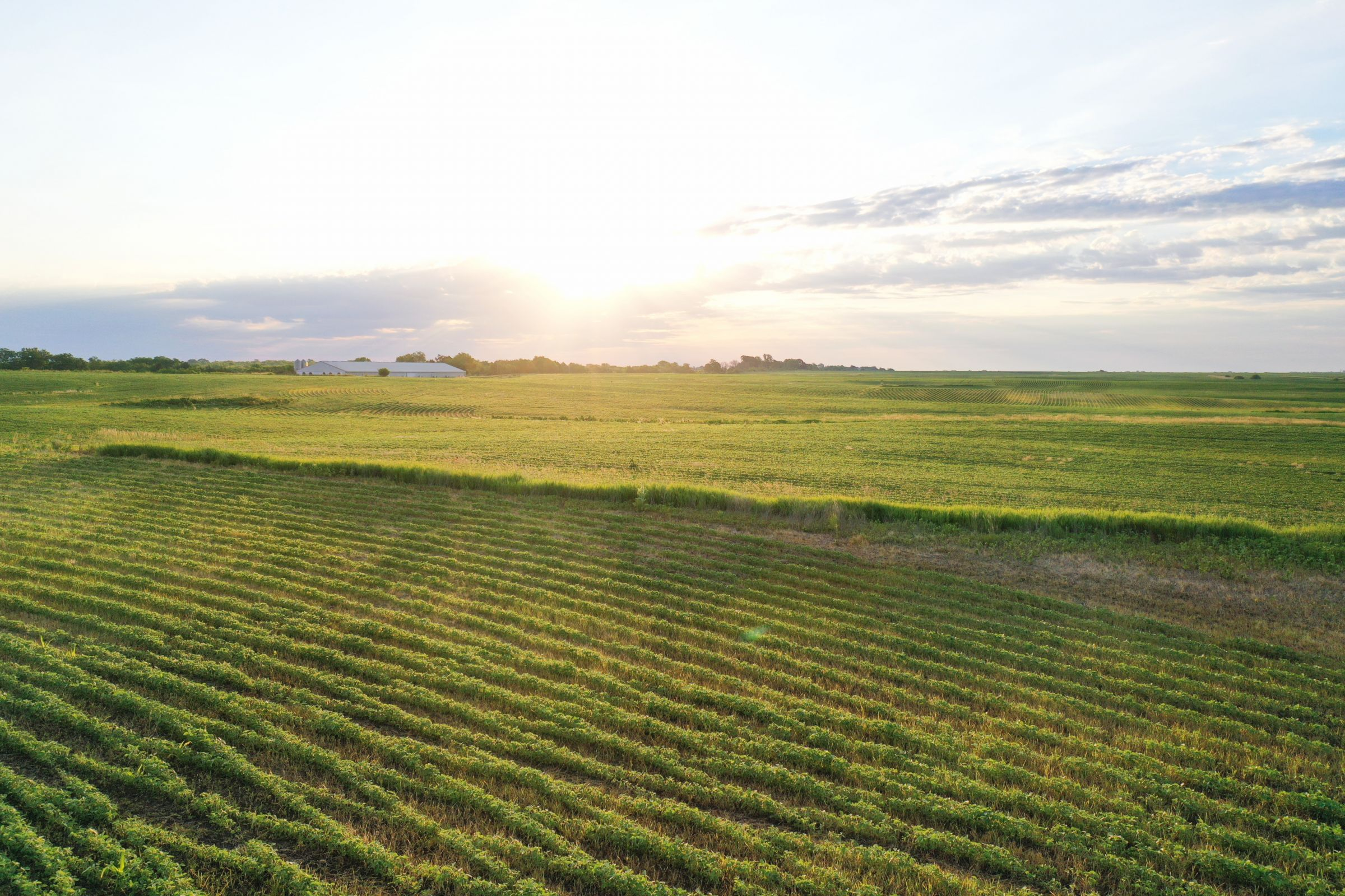 land-clarke-county-iowa-883-acres-listing-number-15596-12-2021-06-23-163327.jpg
