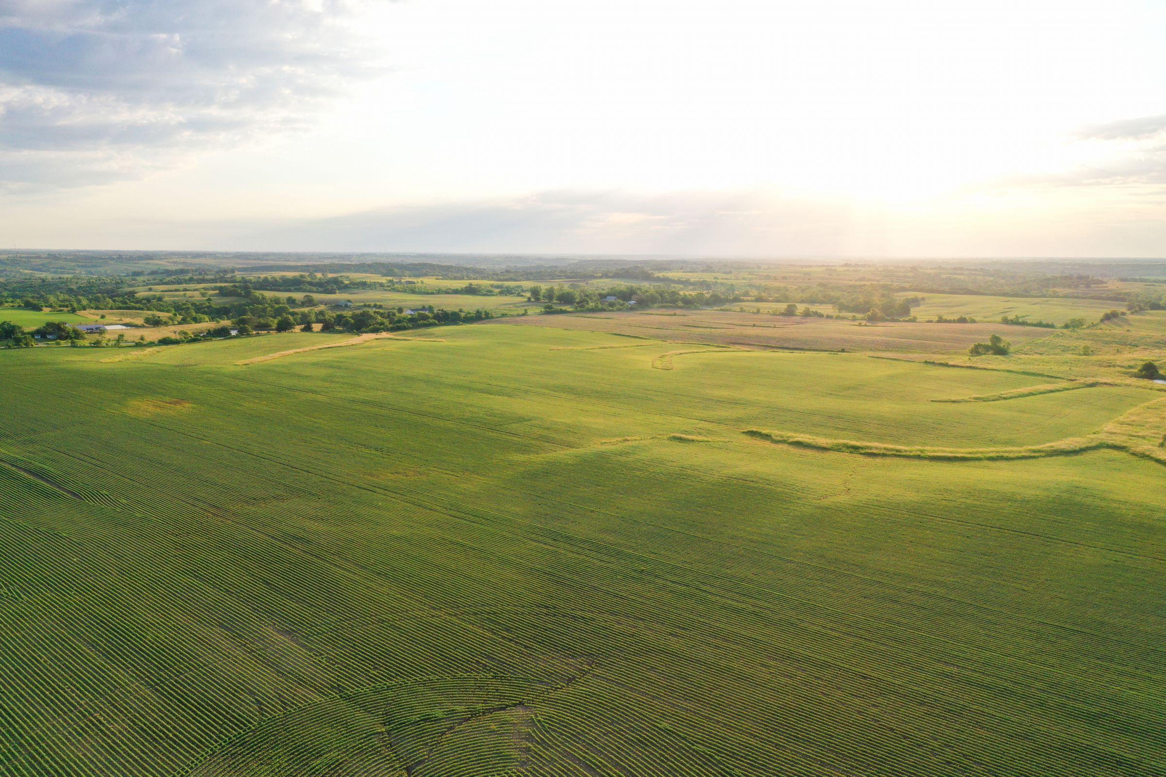 land-clarke-county-iowa-883-acres-listing-number-15596-3-2021-06-23-163313.jpg