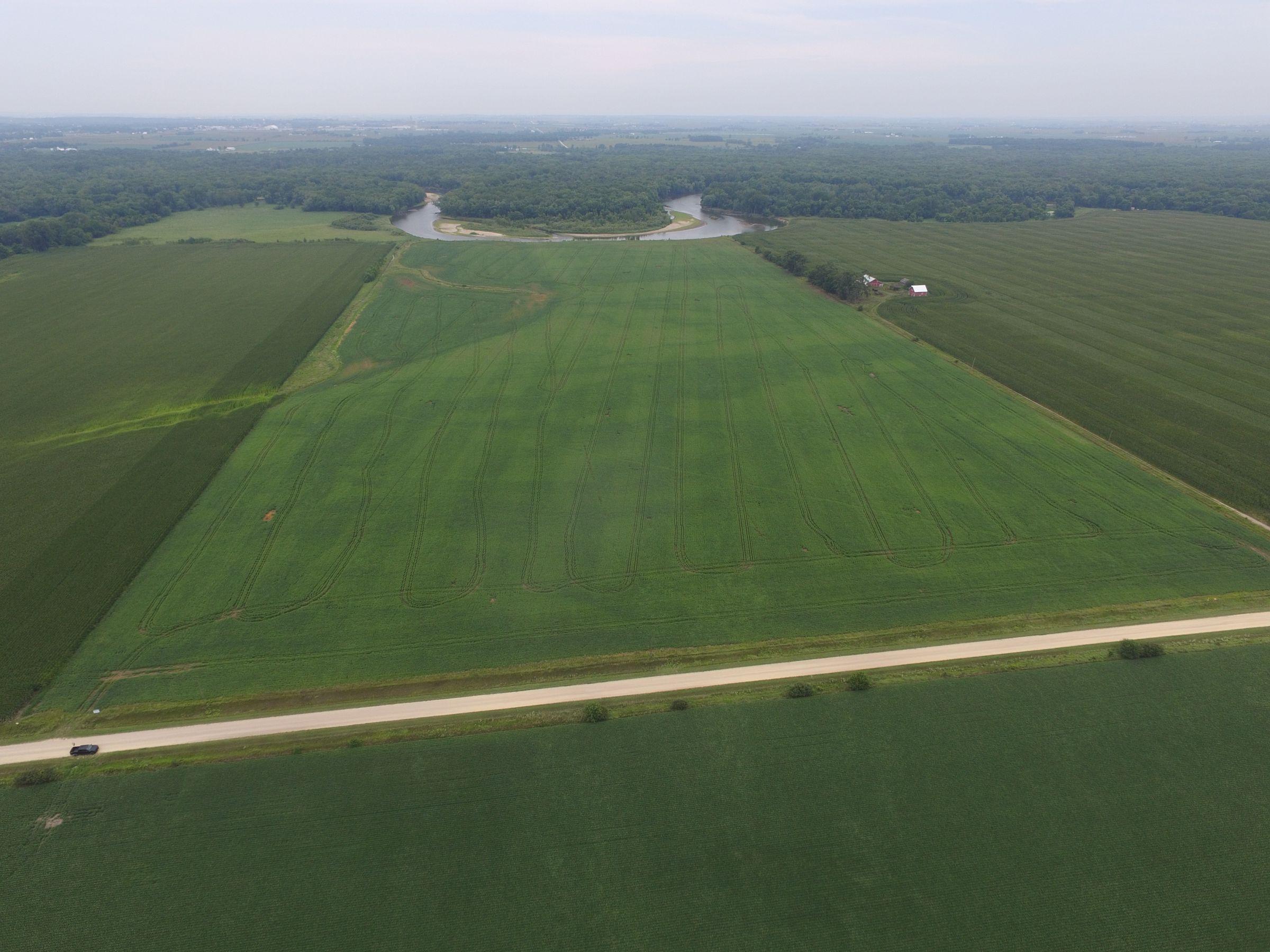 land-scott-county-iowa-80-acres-listing-number-15599-6-2021-07-27-190842.JPG