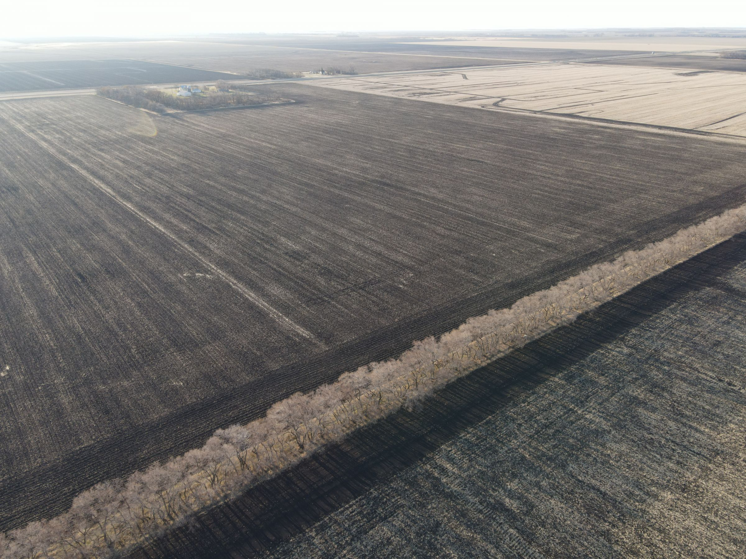 traill-county-north-dakota-74-acres-listing-number-15607-0-2021-06-22-201948.JPG