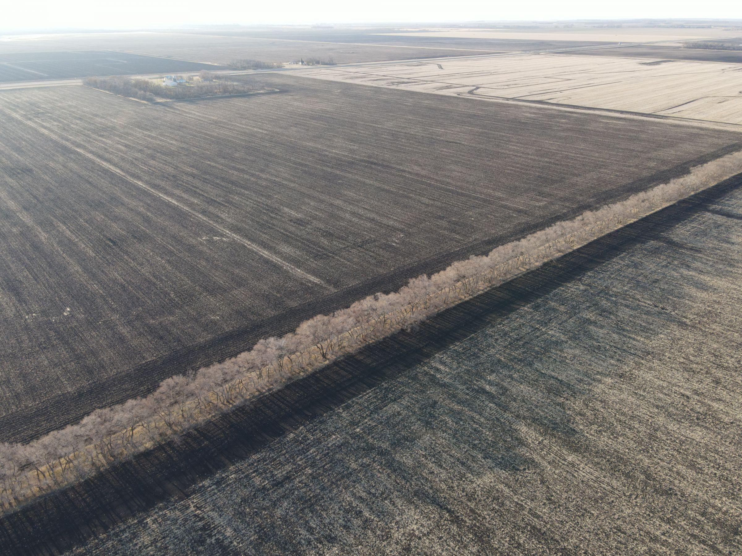 traill-county-north-dakota-74-acres-listing-number-15607-1-2021-06-22-201952.JPG