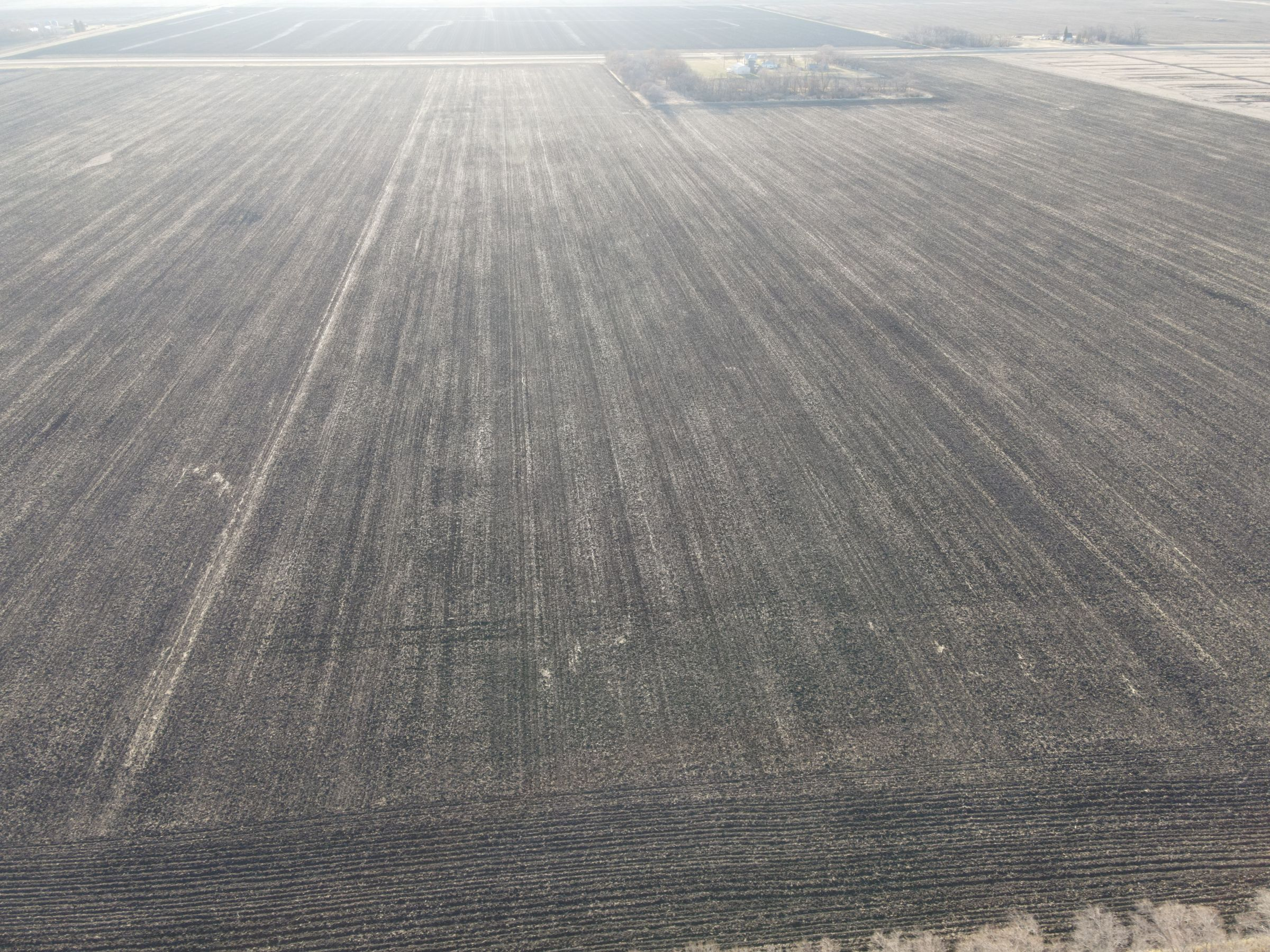 traill-county-north-dakota-74-acres-listing-number-15607-2-2021-06-22-201955.JPG