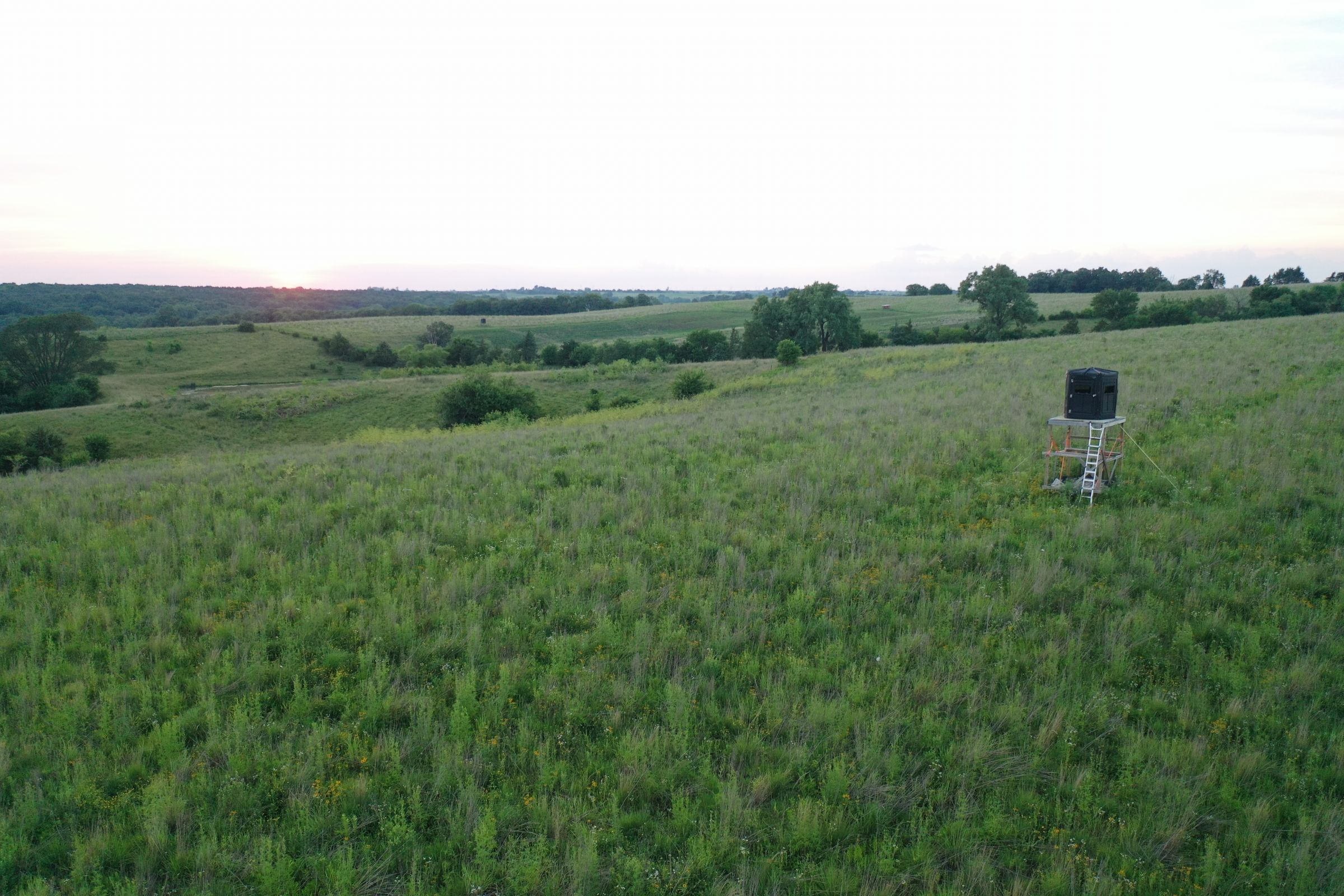 Union County Iowa Recreational CRP and Pasture Land For Sale